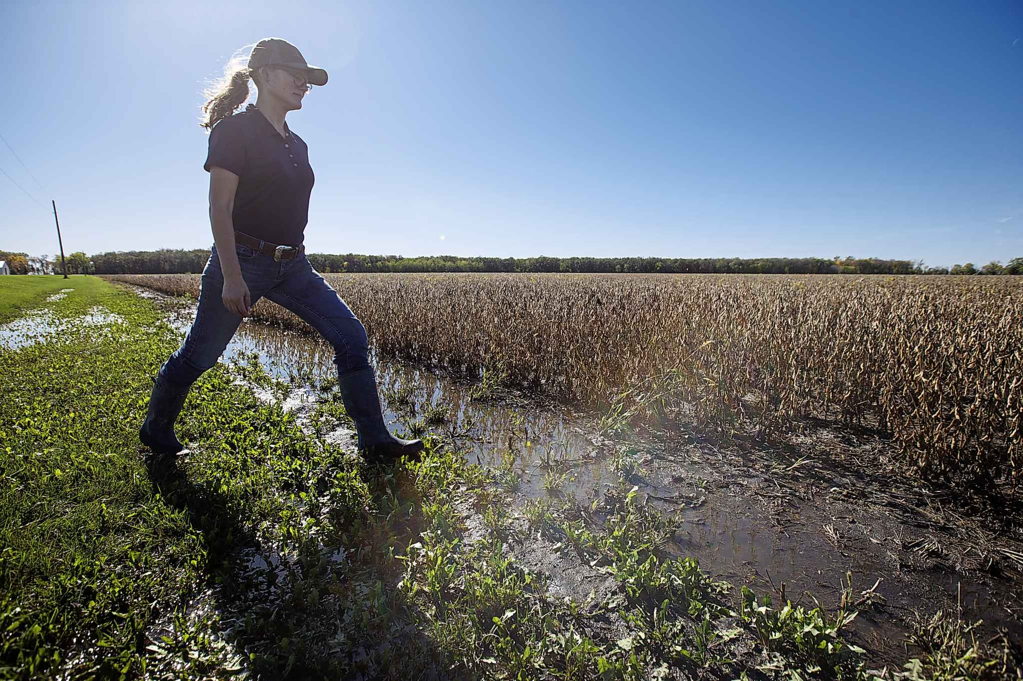 Fiona Jochum walks alongside one of her families soybean fields in the area of St. Francois Xavier, MB, that has been flooded with water from last weekend's storm.
