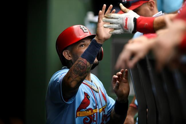 St. Louis Cardinals' Yadier Molina celebrates with teammates in the dugout after scoring on a Rangel Ravelo single during the fourth inning of baseball game against the Chicago Cubs Saturday, Sept. 21, 2019, in Chicago. (AP Photo/Paul Beaty)