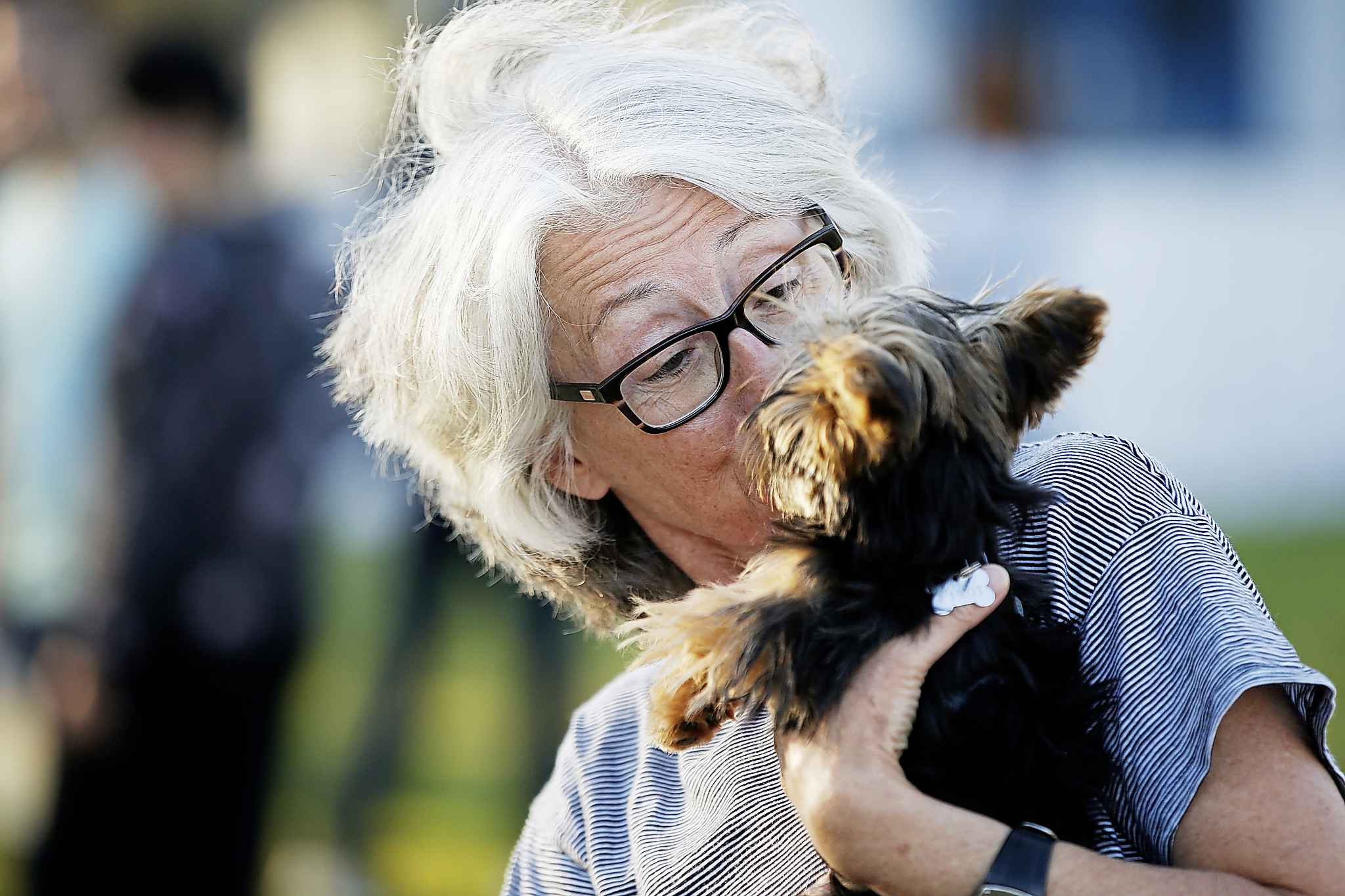 Karen O'Quinn, a dog trainer works with a small pup. Dogs should play with like-sized dogs, especially if they're not familiar with each other.