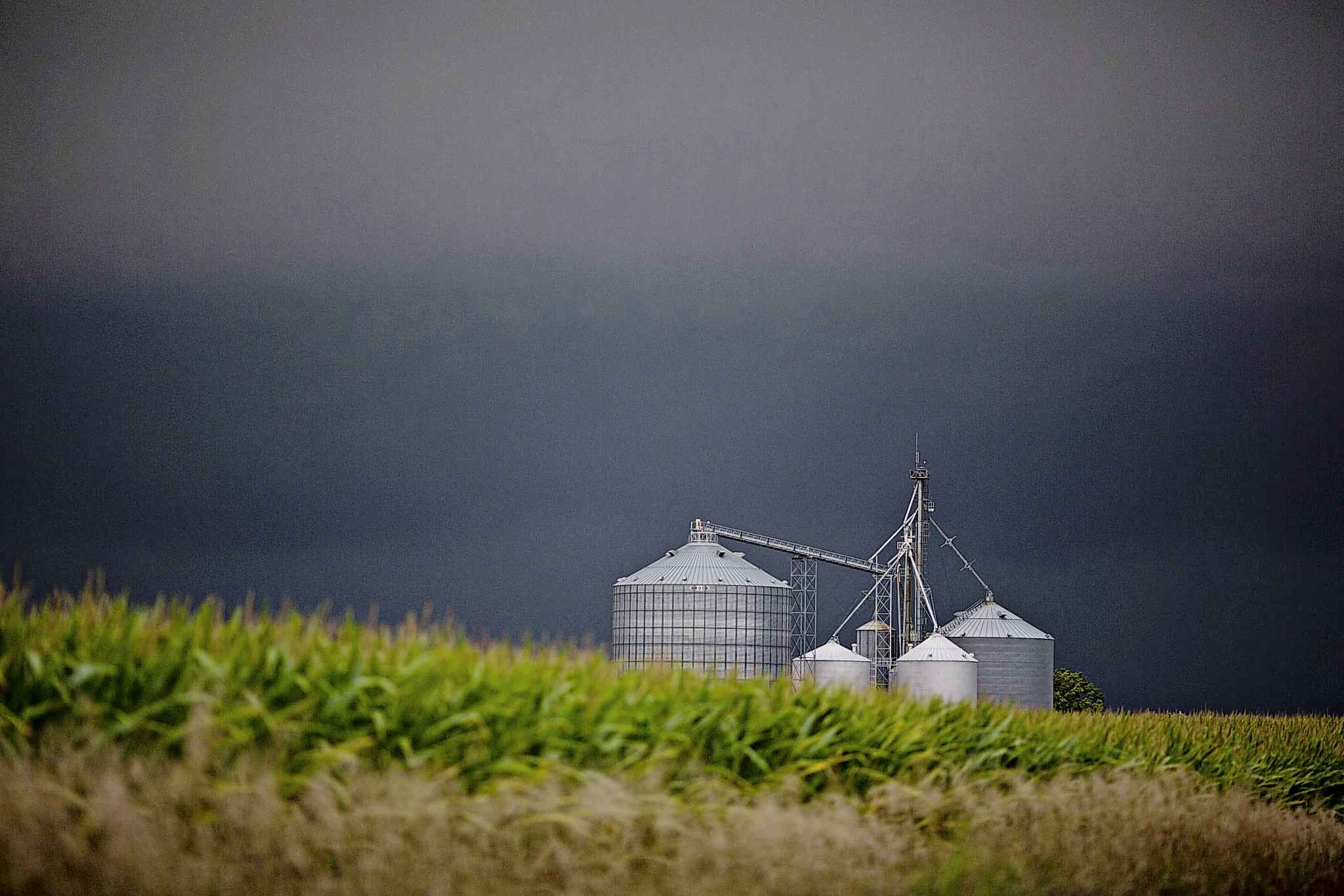Statistics Canada reports net farm income fell by more than half, from $8.1 billion in 2017 to $3.9 billion in 2018. (Daniel Acker / Bloomberg files)