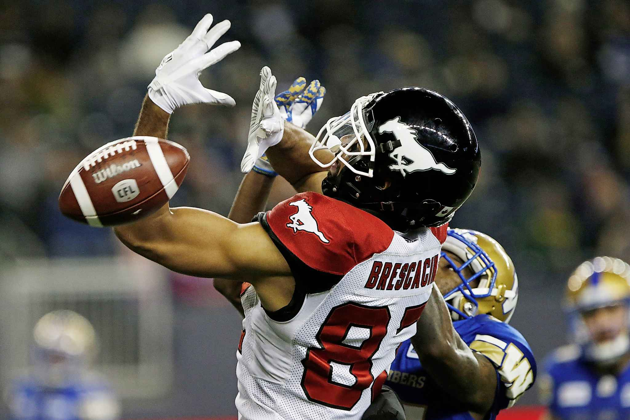 Calgary Stampeders' Juwan Brescacin (82) can't hang onto the pass as he gets pressure from Winnipeg Blue Bombers' Brandon Alexander (37) Friday. JOHN WOODS / THE CANADIAN PRESS