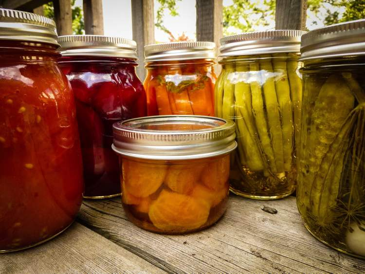 Food educator Janet Nezon makes at least six or seven kinds of pickles and canned vegetables each year. Last year her creations included canned tomatoes, left, red beets, pickled carrots with oregano, dilly green beans, garlic dills and, in the small jar, golden beets.