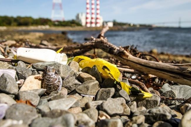 Garbage at Tufts Cove beach in Halifax is shown in a handout photo. A Halifax-based environmental organization says corporations need to take responsibility for their contributions to waste polluting Canada's shorelines, green spaces, and communities. THE CANADIAN PRESS/HO-Ecology Action Centre MANDATORY CREDIT