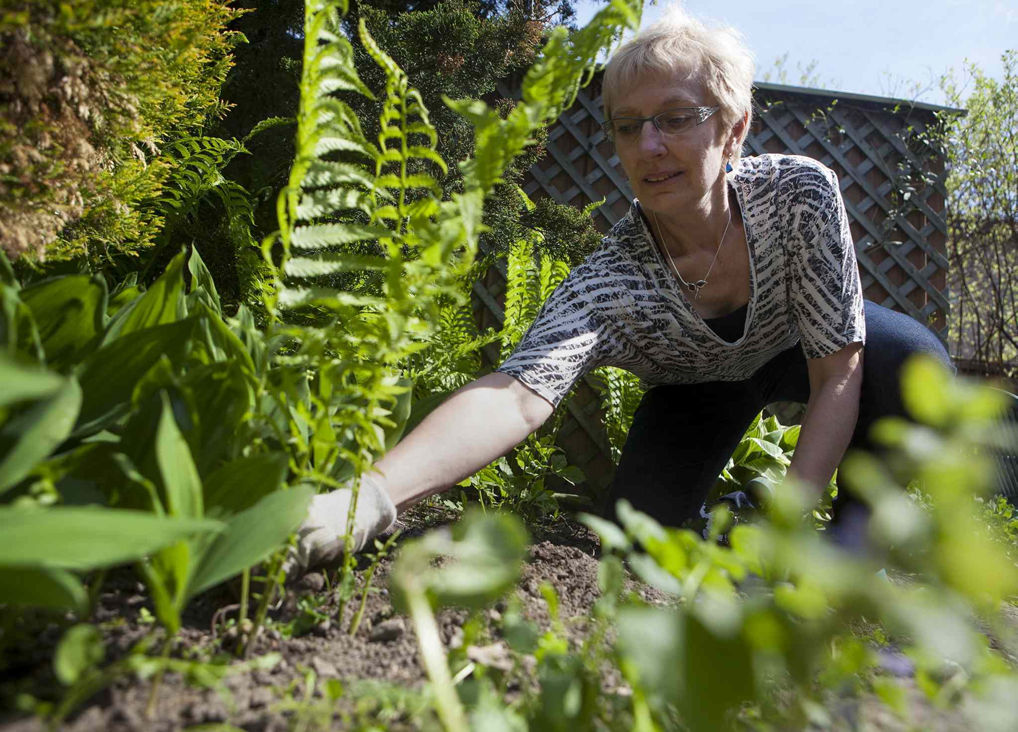 Eileen Boxall tends to her backyard garden in Toronto.