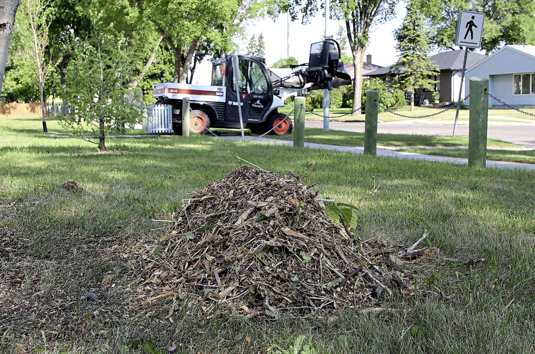 A city employee was at Richardson Fir Tot Lot with heavy machinery Wednesday, one week after residents say the first trees and bushes were removed.