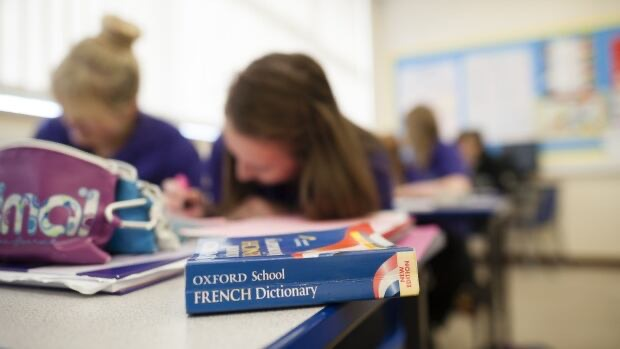 The Winnipeg School Division will look at the feasibility of offering an International Baccalaureate or advanced placement program for French immersion students. (Photofusion/Shutterstock)