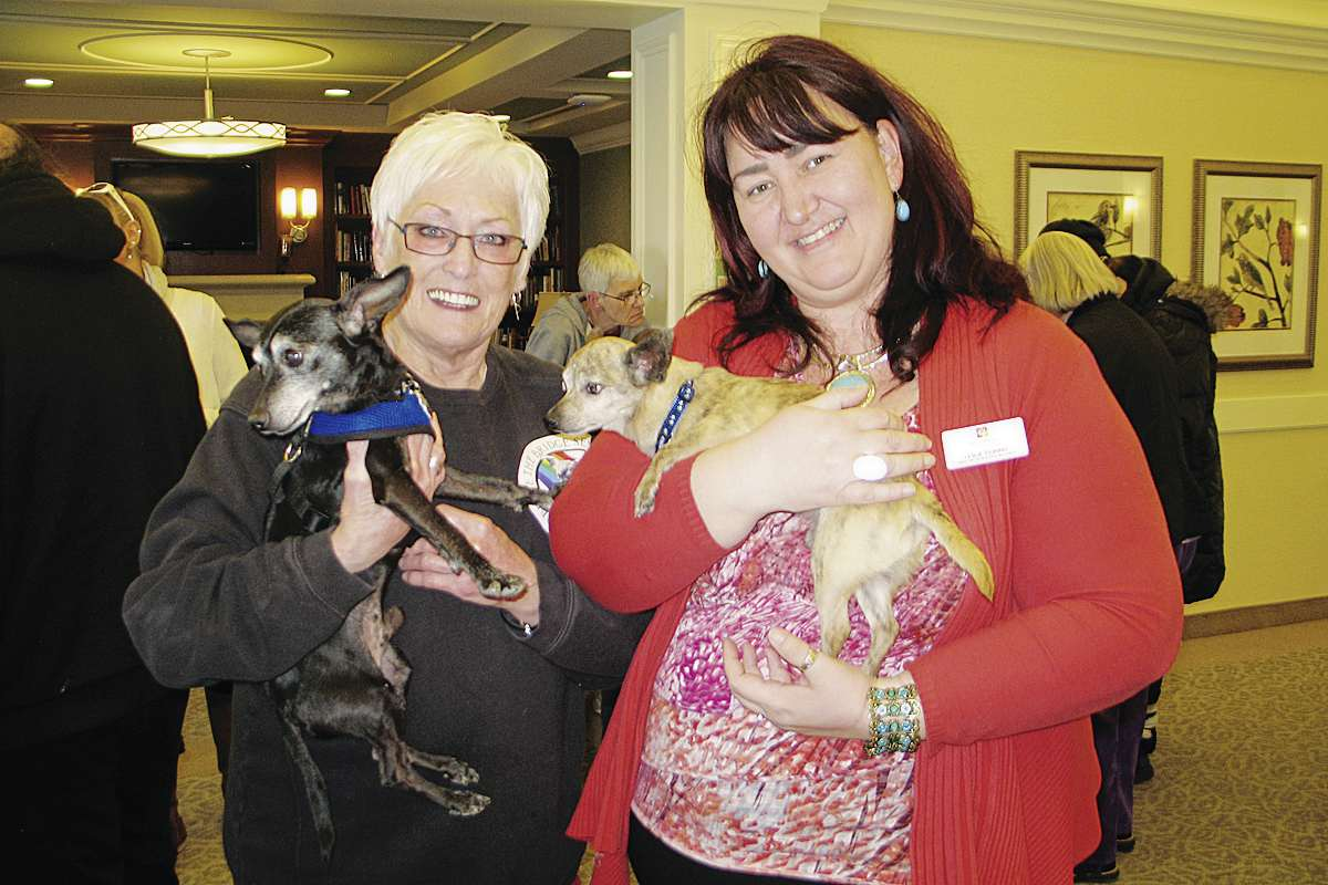 Before the Bridge Senior K9 Rescue founder and executive director Judy Smith-Hill (left) and River Ridge Retirement Residence director of health and wellness Leslie Fiorino hold onto Freddy and Marvin, respectively, at the retirement home's recent Seniors Loving Seniors pet adoption event.