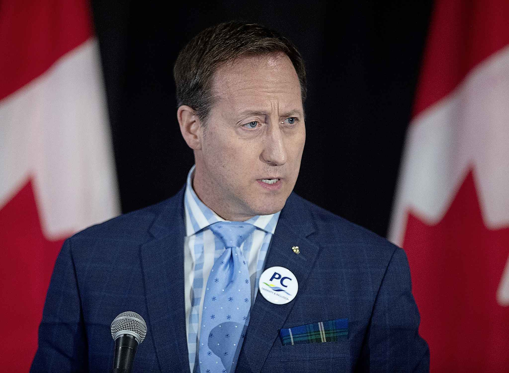 Peter MacKay addresses the crowd at a federal Conservative leadership forum in Halifax, N.S. (Andrew Vaughan / The Canadian Press files)