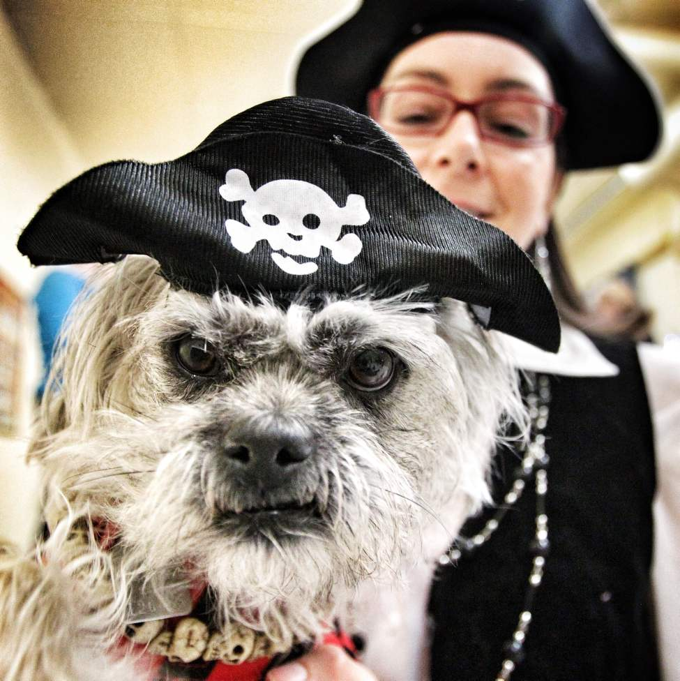 Arrhg, matey! Yo-ho-ho and a bowl of treats! Chrissy, a three-year-old poodle cross, with her first mate, Jackie Hykaway, at the Howloween bash — a big party for little dogs at the The Little Dog House Small Dog Centre on McGillivray Place.   Sunday, October 28, 2012.  (MIKE DEAL / WINNIPEG FREE PRESS)