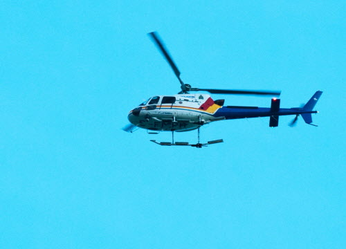 RCMP Helicopter searches for the gunman in Moncton, N.B.on Wednesday.   (Marc Grandmaison / THE CANADIAN PRESS)