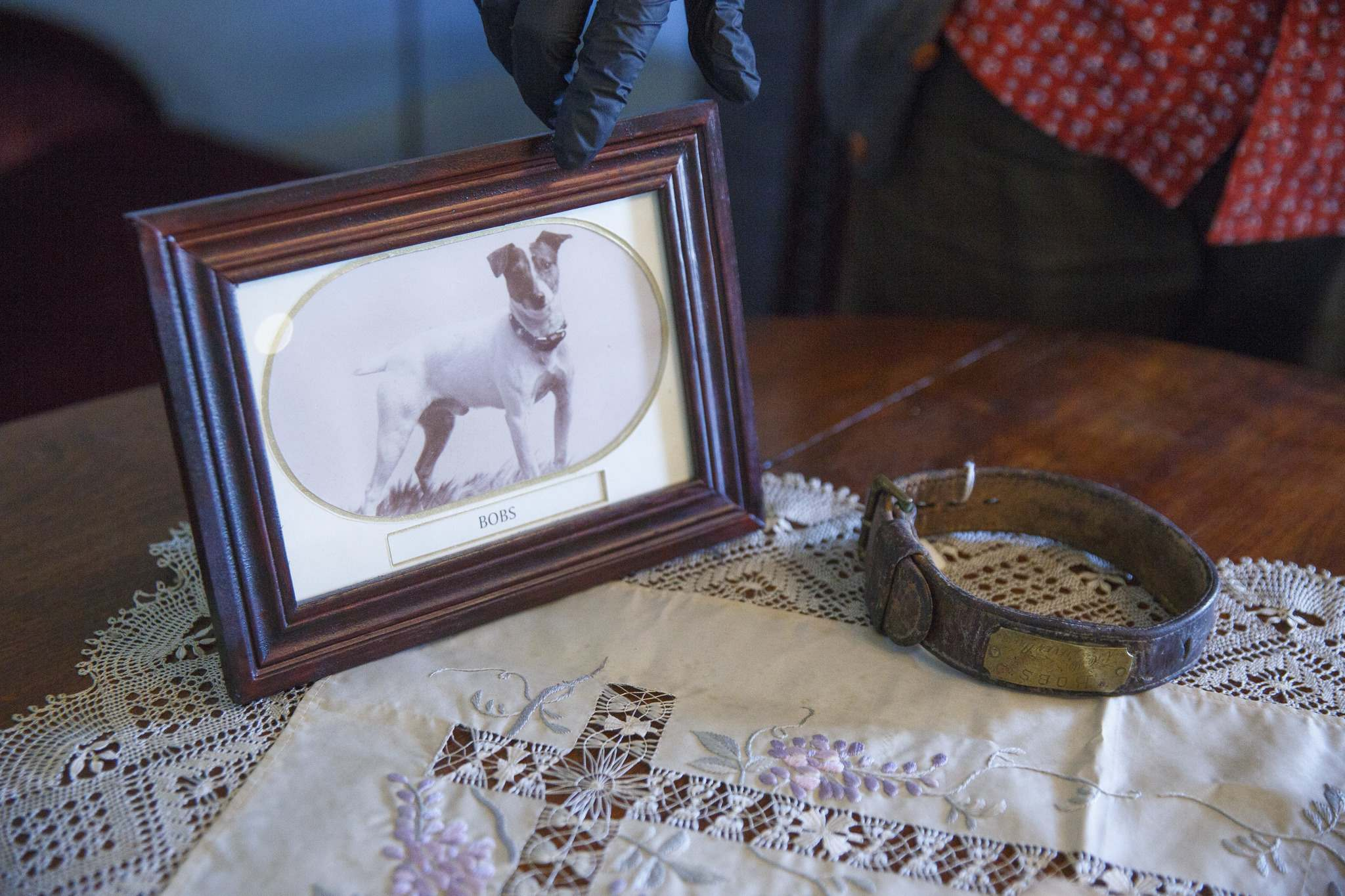 A rare photo of the Inkster family dog, Bobs, as well as his collar with engraved name plate. (Mike Deal / Winnipeg Free Press)</p>