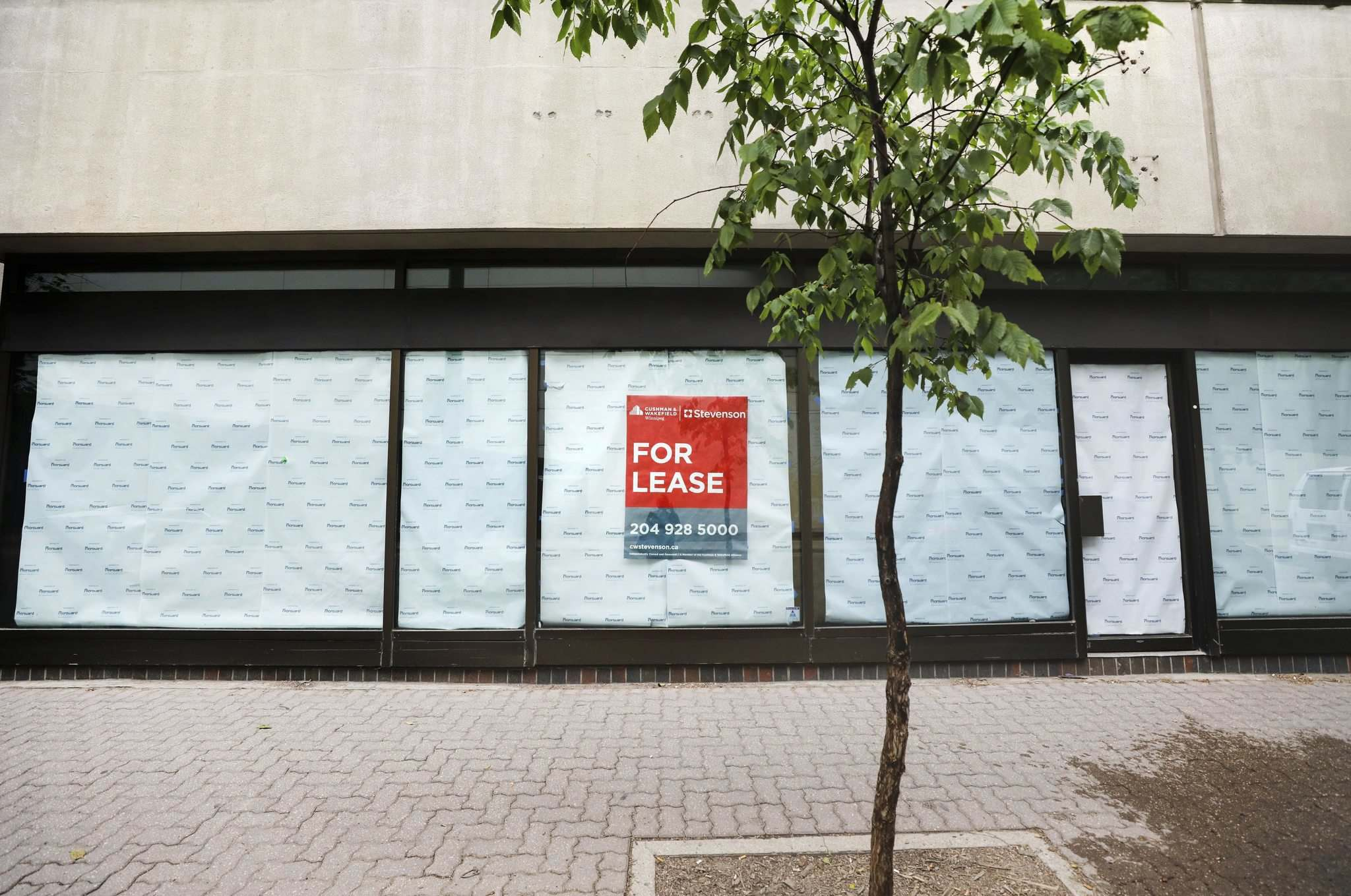 RUTH BONNEVILLE / WINNIPEG FREE PRESS</p><p>Space for lease on Carlton Street across from the convention centre.</p></p>