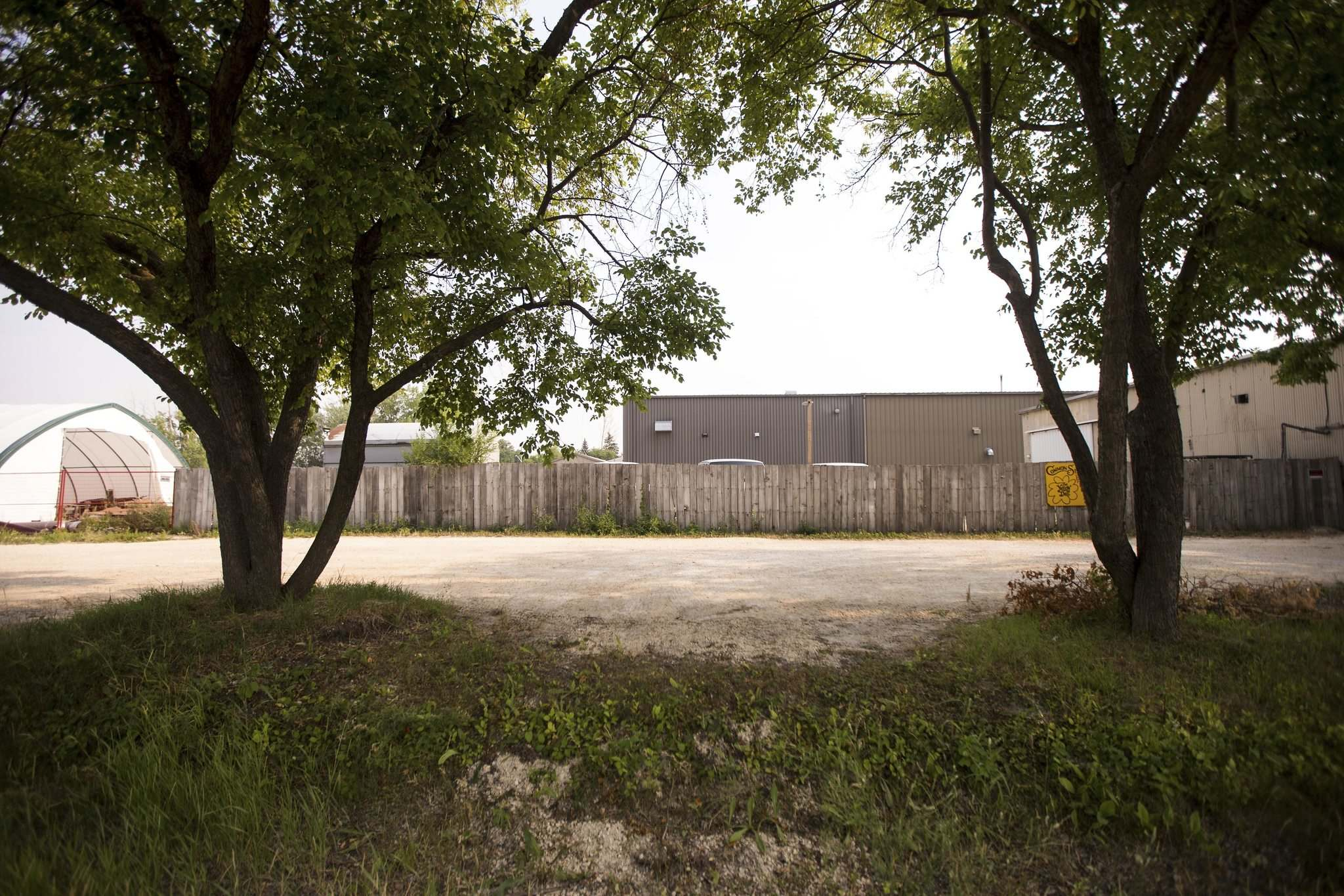 MIKAELA MACKENZIE / WINNIPEG FREE PRESS</p><p>The site of the St. Boniface Industrial School. The front of the building was likely between the two trees.</p>