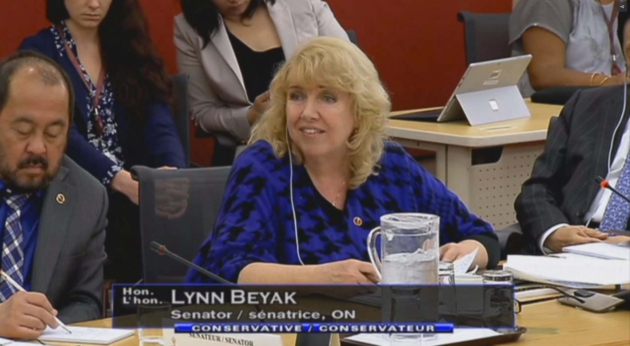 CPAC </p><p>Senator Lynn Beyak during a Senate Committee on Aboriginal Peoples in March.</p>