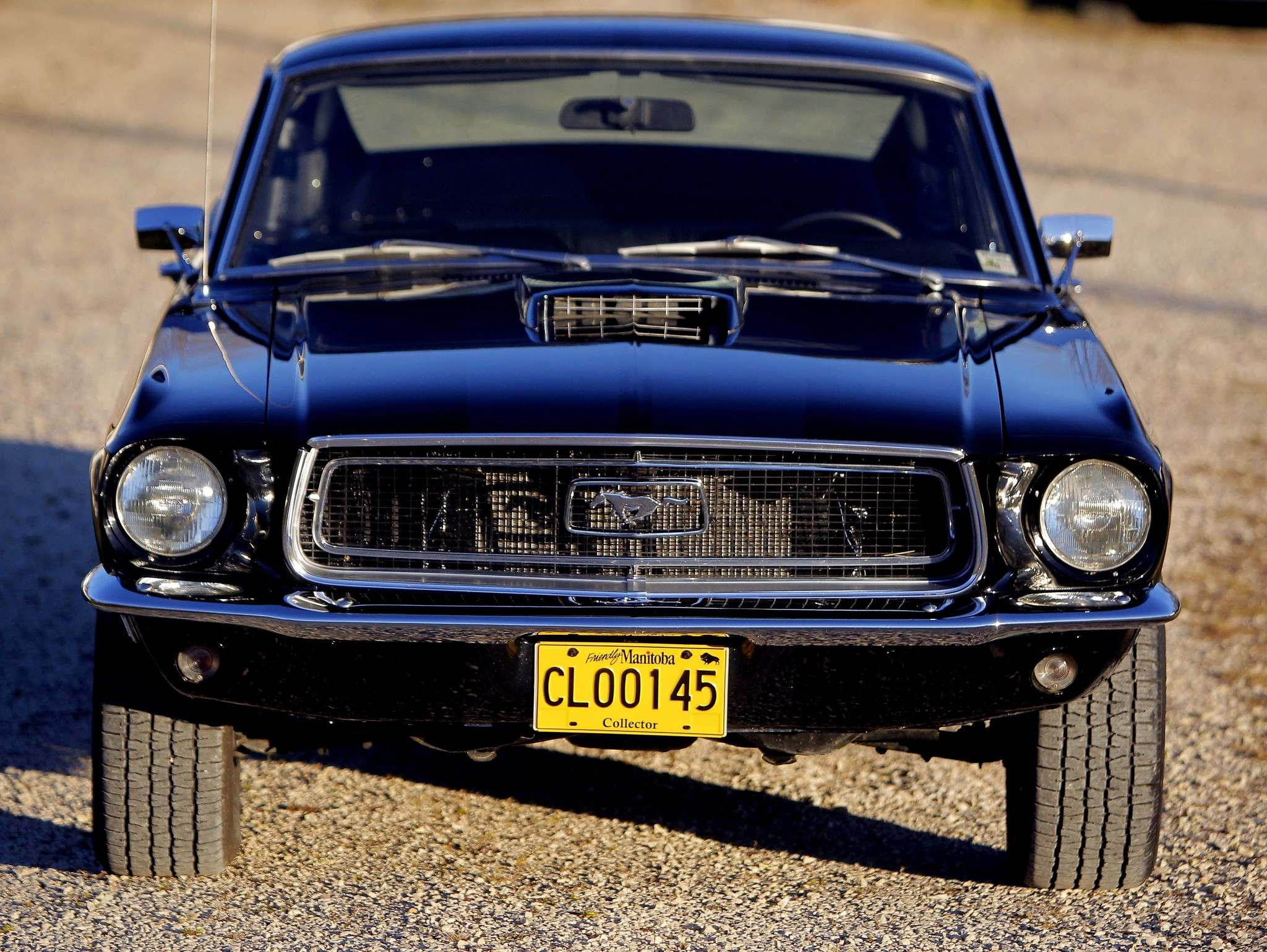 BORIS MINKEVICH / WINNIPEG FREE PRESSBodies of the '68 Mustang were stretched two inches longer and a marginally wider engine bay was designed to accommodate a new big-block V-8 engine option.
