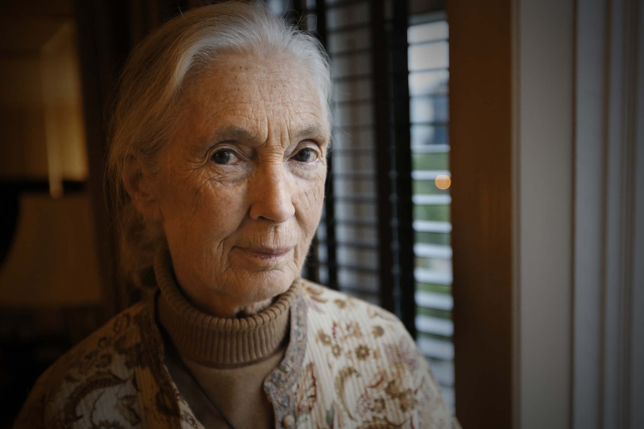 JOHN WOODS / WINNIPEG FREE PRESS FILES</p><p>Jane Goodall will receive an honorary doctorate from the University of Winnipeg.</p>