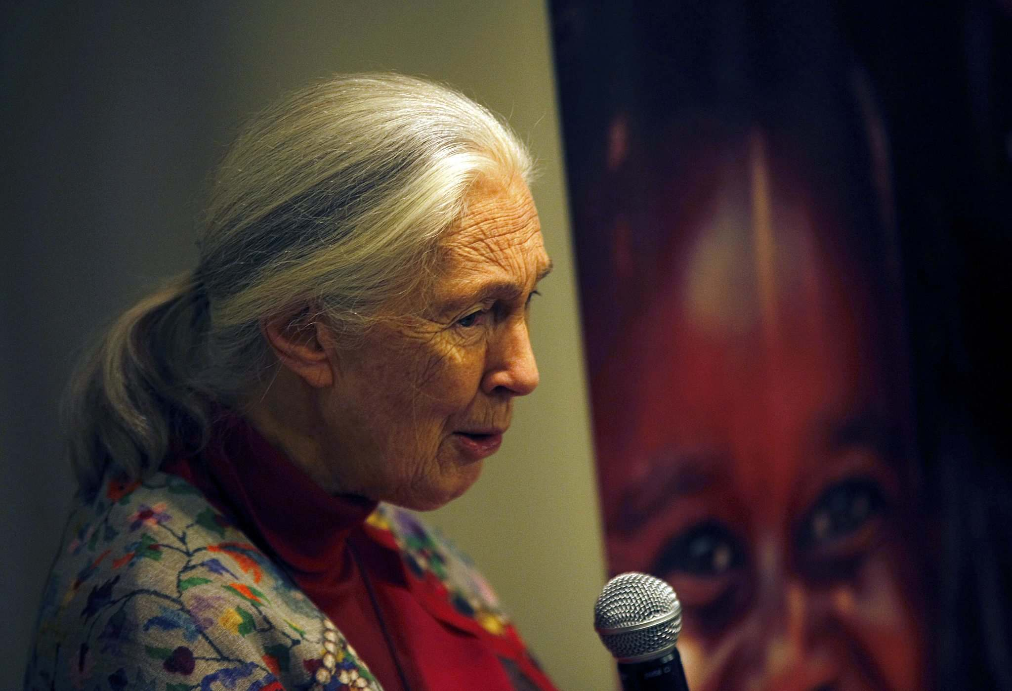 <p>Dr. Jane Goodall speaks at a workshop for school kids Thursday afternoon.</p>
