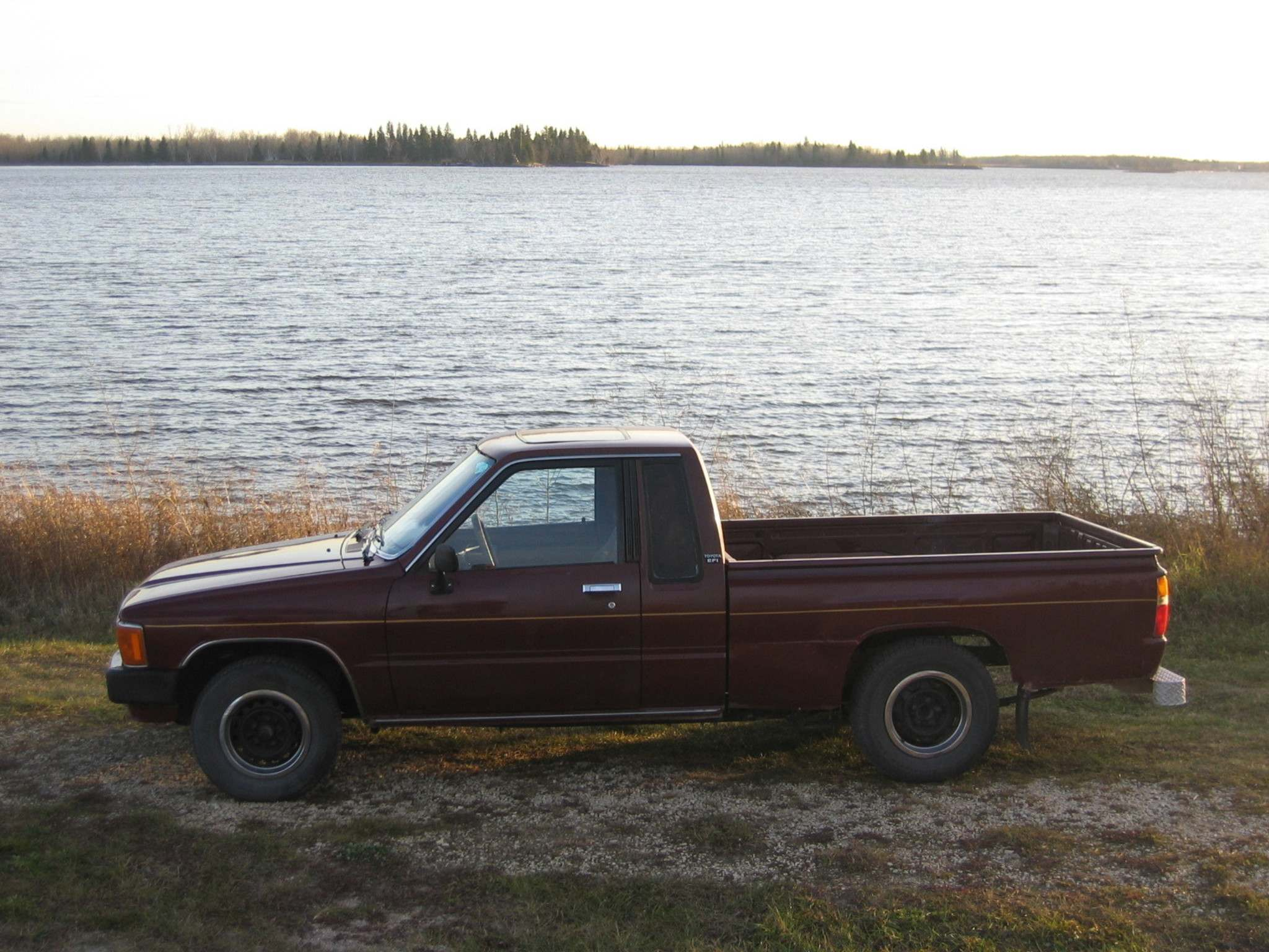 Willy's old 1986 Toyota hadn't moved in more than a year when he bought it for $500.