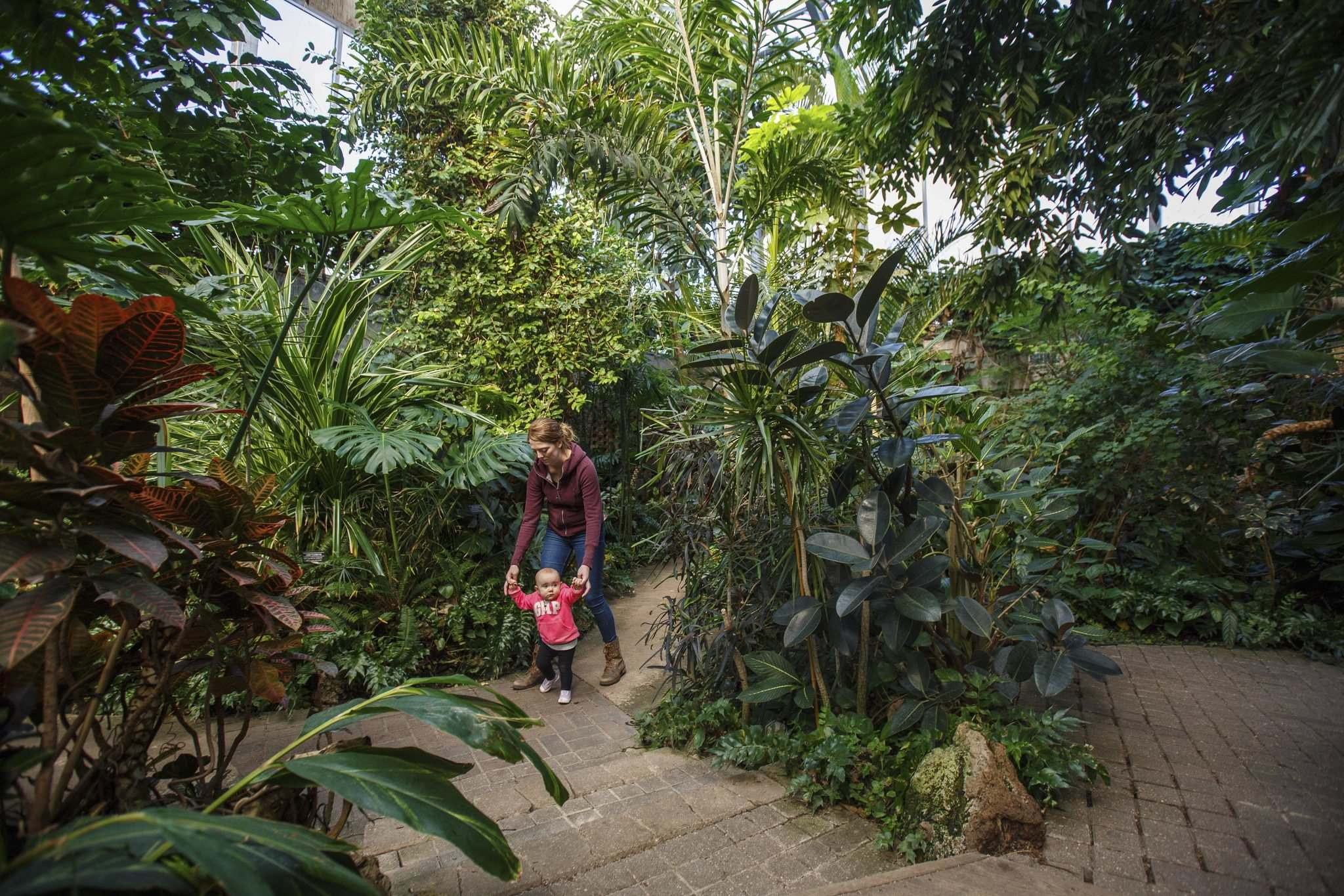 Lindsay Cook and her 11 month old daughter Emma take advantage of the tropical temperatures in the conservatory to stretch their legs on a walk. (Mike Deal / Winnipeg Free Press)</p>