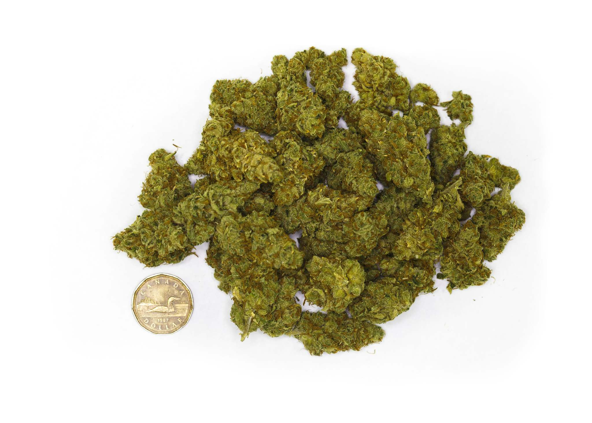 Thirty grams of dried cannabis bud -- or slightly more than one ounce -- is the legal limit on public possession for Canadian adults.  (Mike Deal / Winnipeg Free Press files)