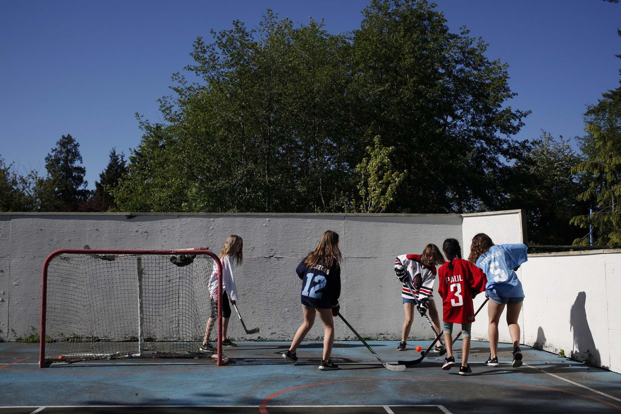 Most children make do with community facilities that have no bells and whistles. An elite few have parents who can spend tens of thousands of dollars on rinks, soccer pitches and putting greens.