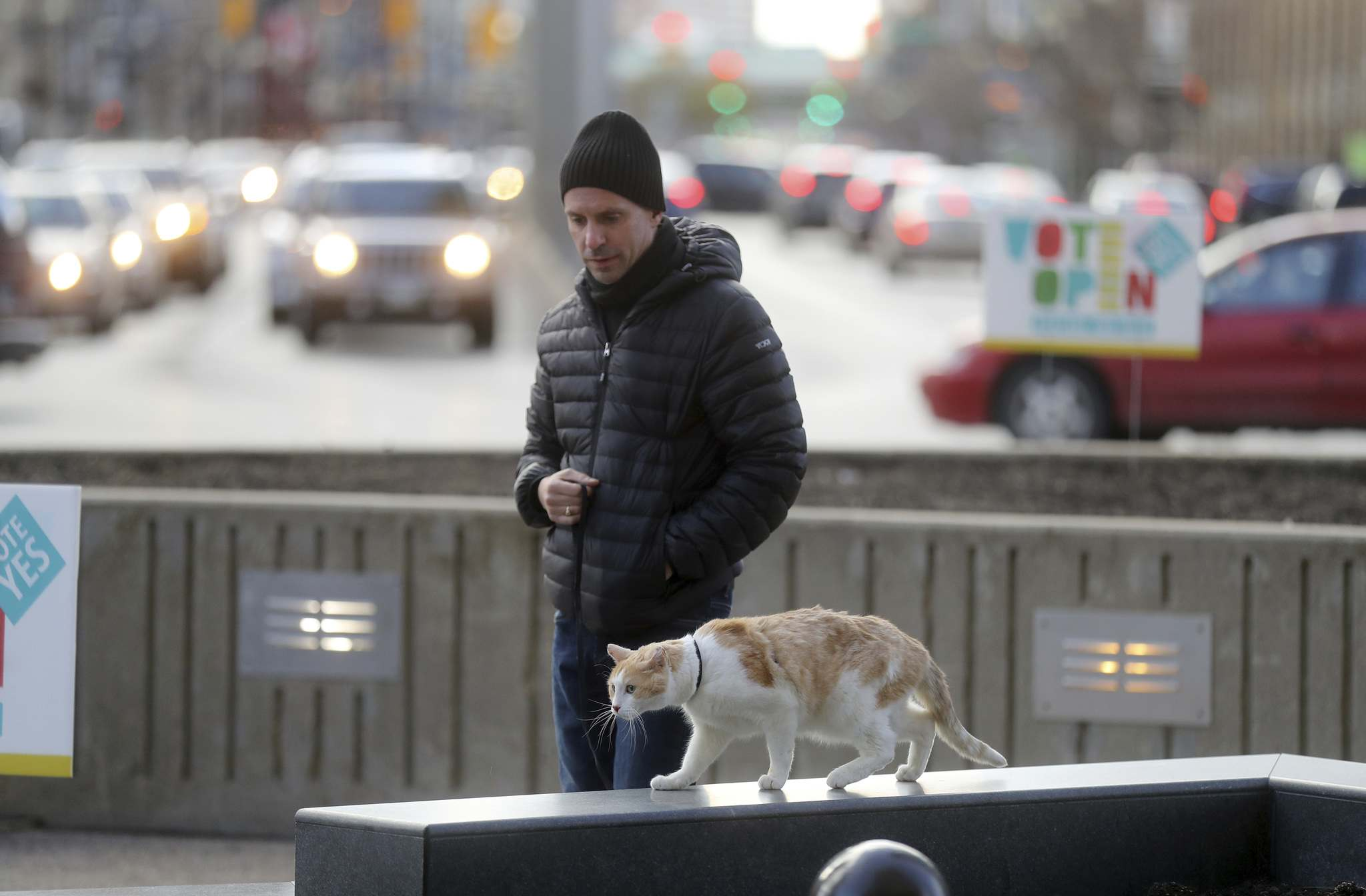 Corey Quintaine and his cat Sam live downtown. He would like to see the intersection of Portage and Main open. (Trevor Hagan / Winnipeg Free Press)</p>