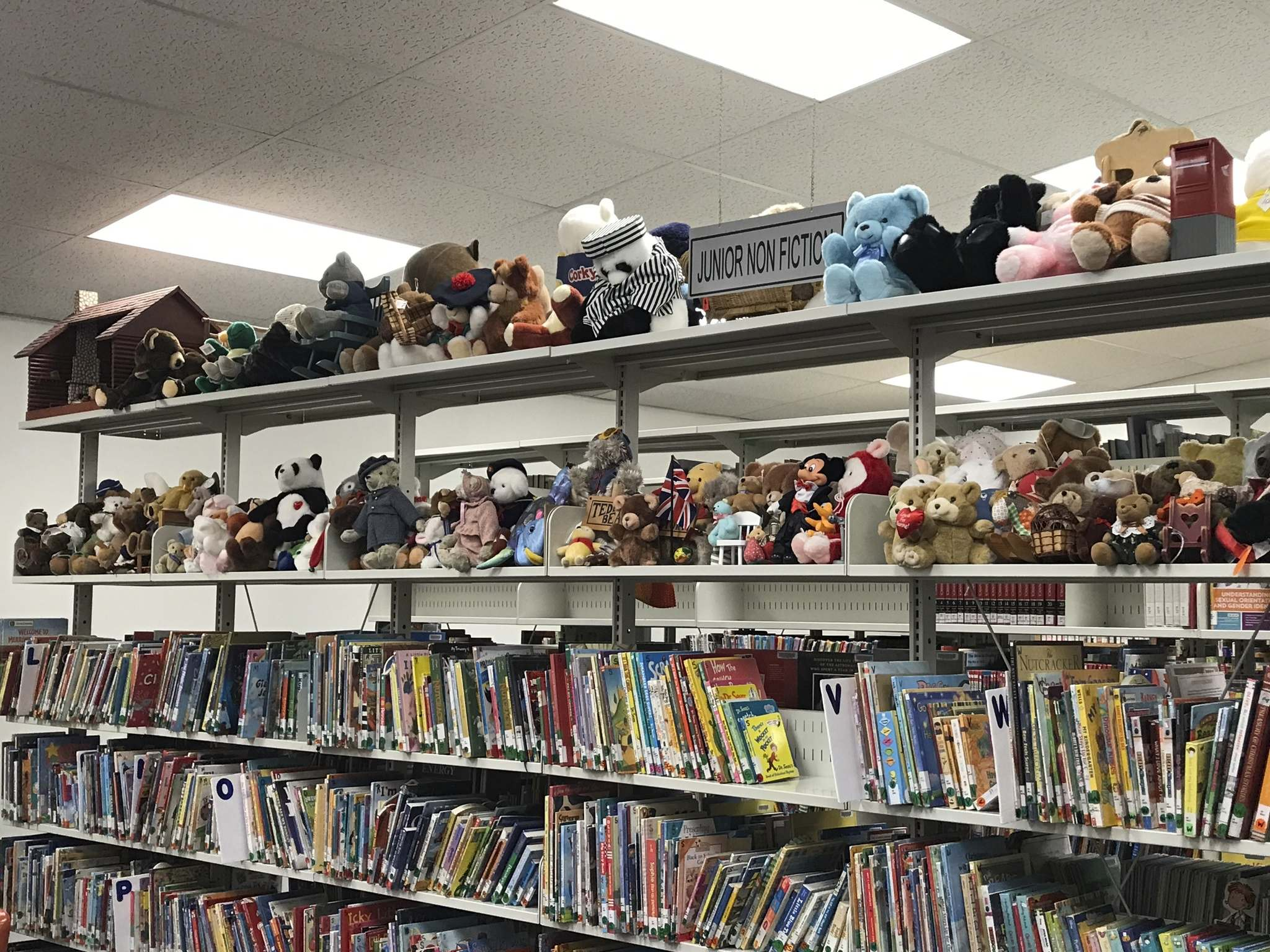 Vera donated many bears to the Brokenhead River Regional Library where they are displayed in the children's section. (Supplied)