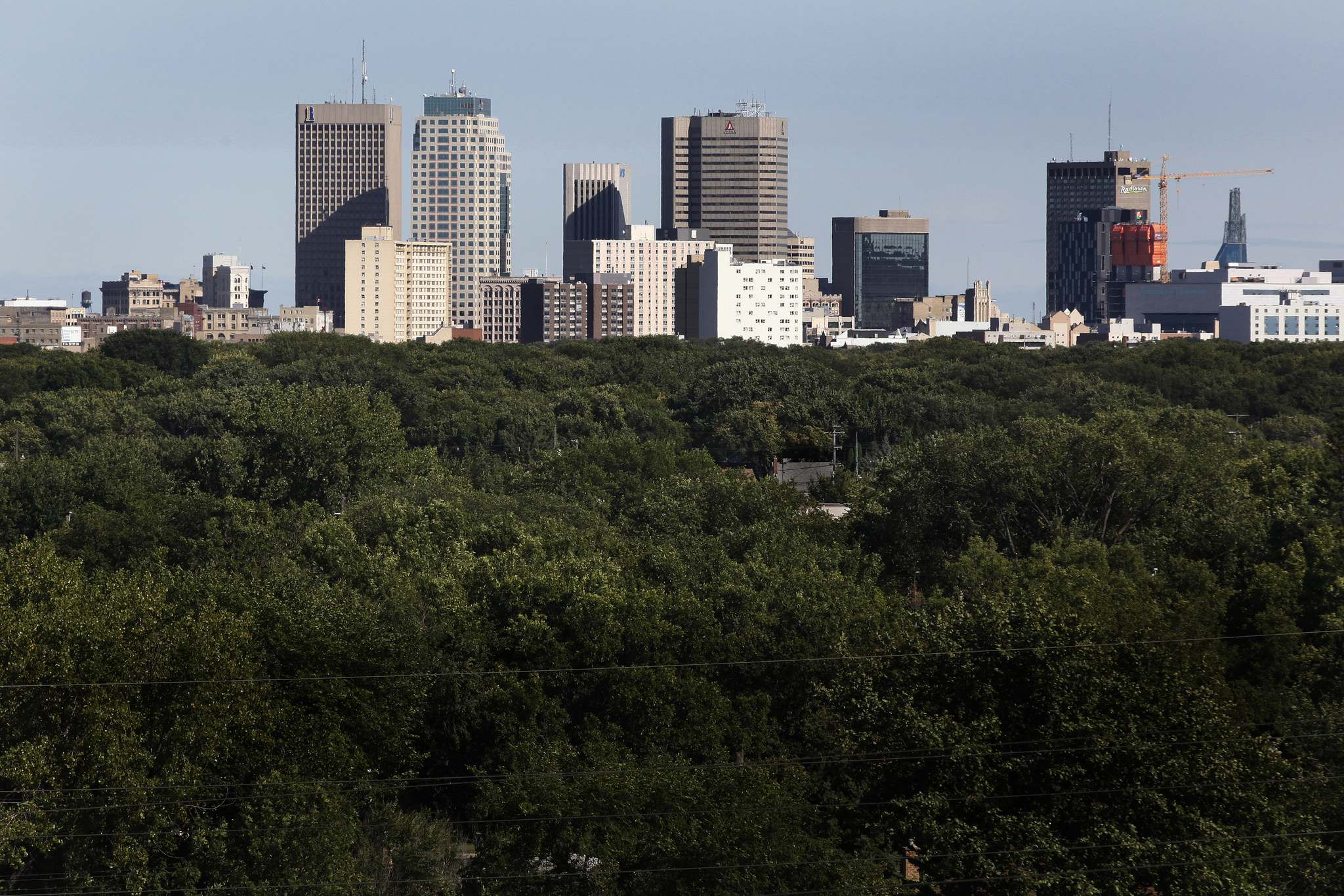 John Woods / Winnipeg Free Press Files</p><p>Winnipeg's elm canopy. City councillors endorsed the proposed 2019 parks department budget, which calls for a 36 per cent decrease in its reforestation and urban forest enhancement spending.</p>