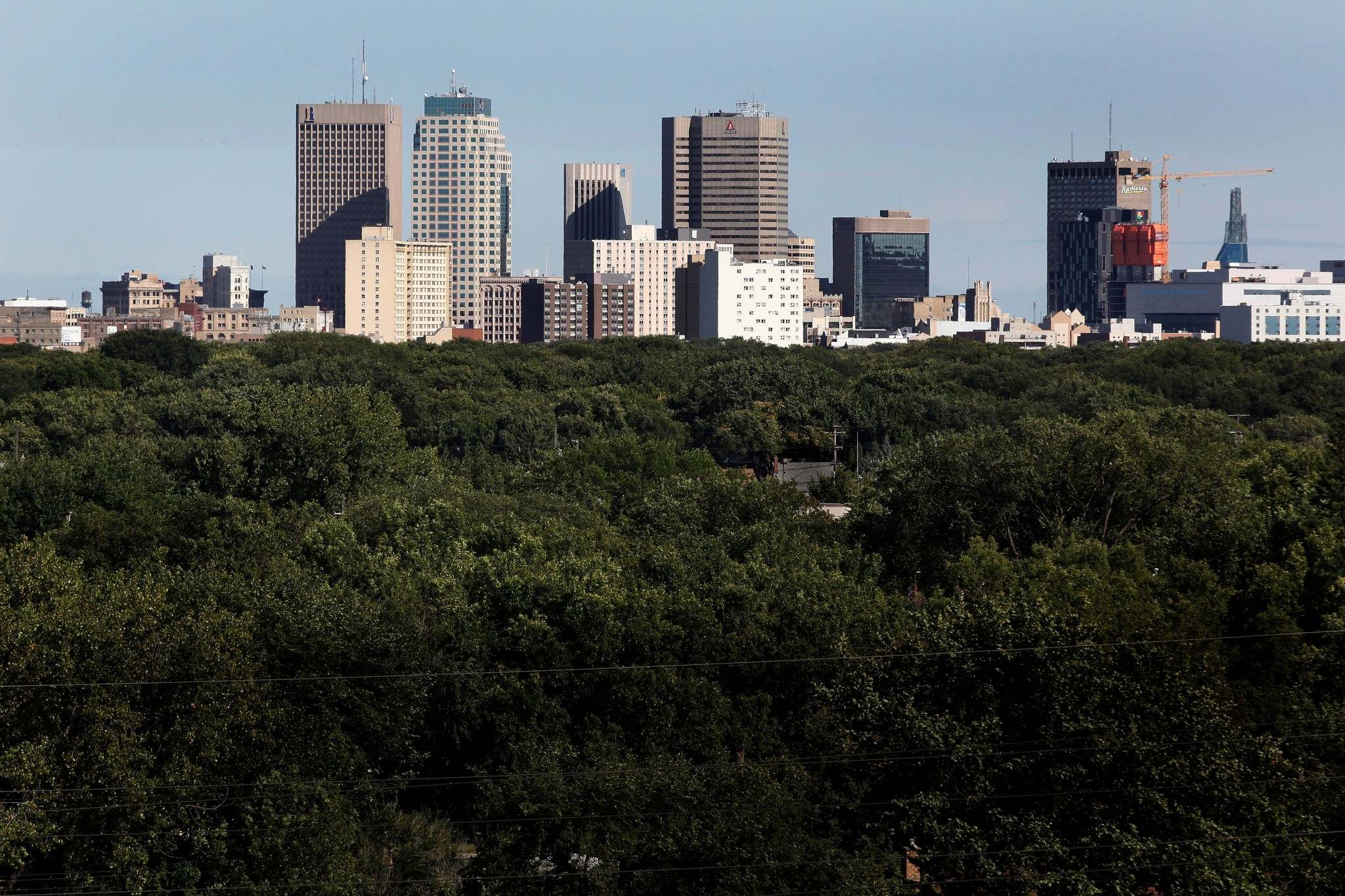 RUTH BONNEVILLE / WINNIPEG FREE PRESS FILES</p><p>Winnipeg's urban forest canopy could be largely stripped bare as the most common trees, ash and American elm, are under attack by deadly pest infestations.</p>