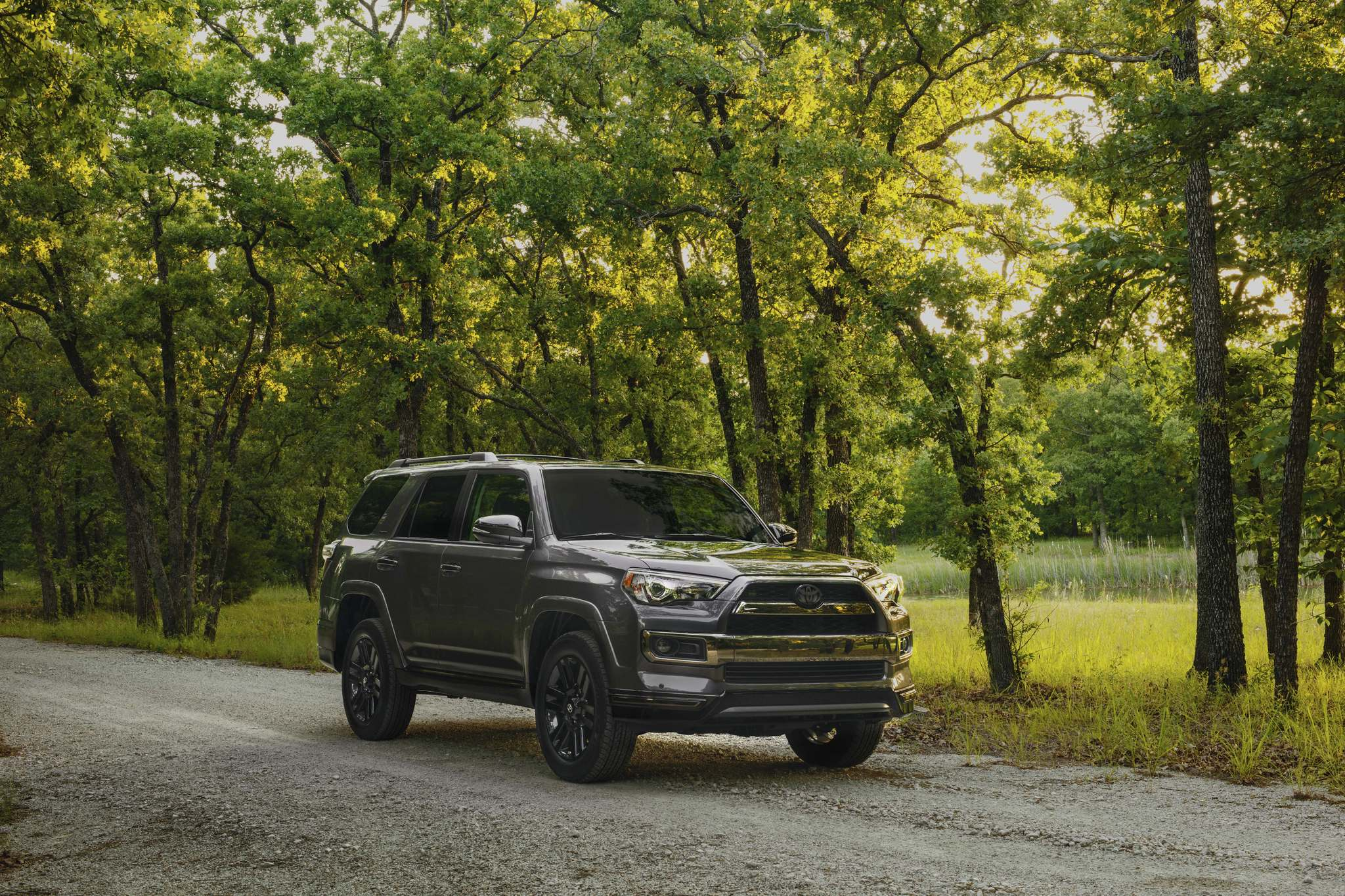 ToyotaThe ability to dig a little deeper into the forest than the competition is the key reason why the Toyota 4Runner remains one of Free Press Autos editor Willy Williamson's favourite vehicles.