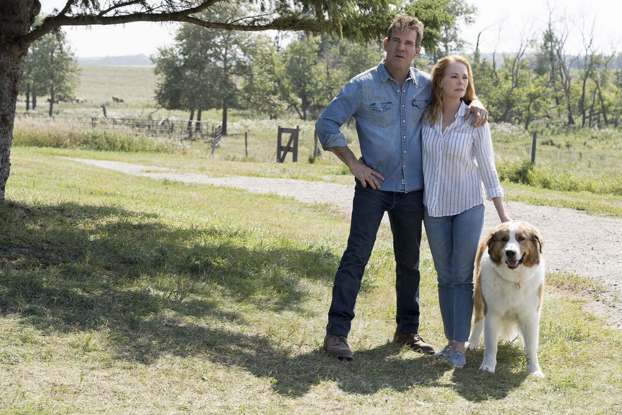 UNIVERSAL</p><p>Ethan (Dennis Quaid) and his wife Hannan (Peggy Gilpin) alongside Bailey in A Dog's Journey.</p>