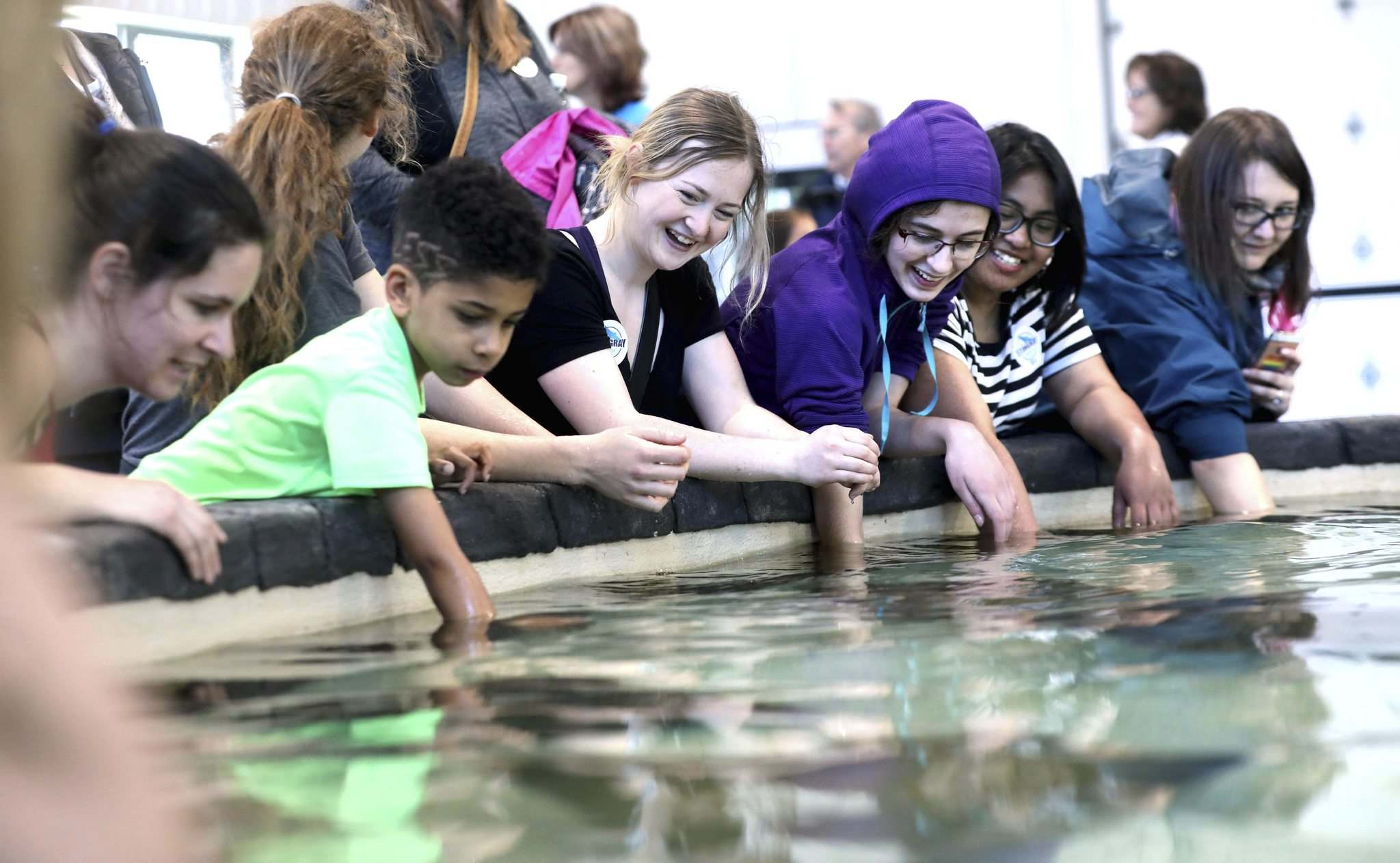 The Assiniboine Park Zoo's new Stingray Beach exhibit officially opened with visitors of all ages rolling up their sleeves to experience the squishy, slimy touch of a stingray Thursday.