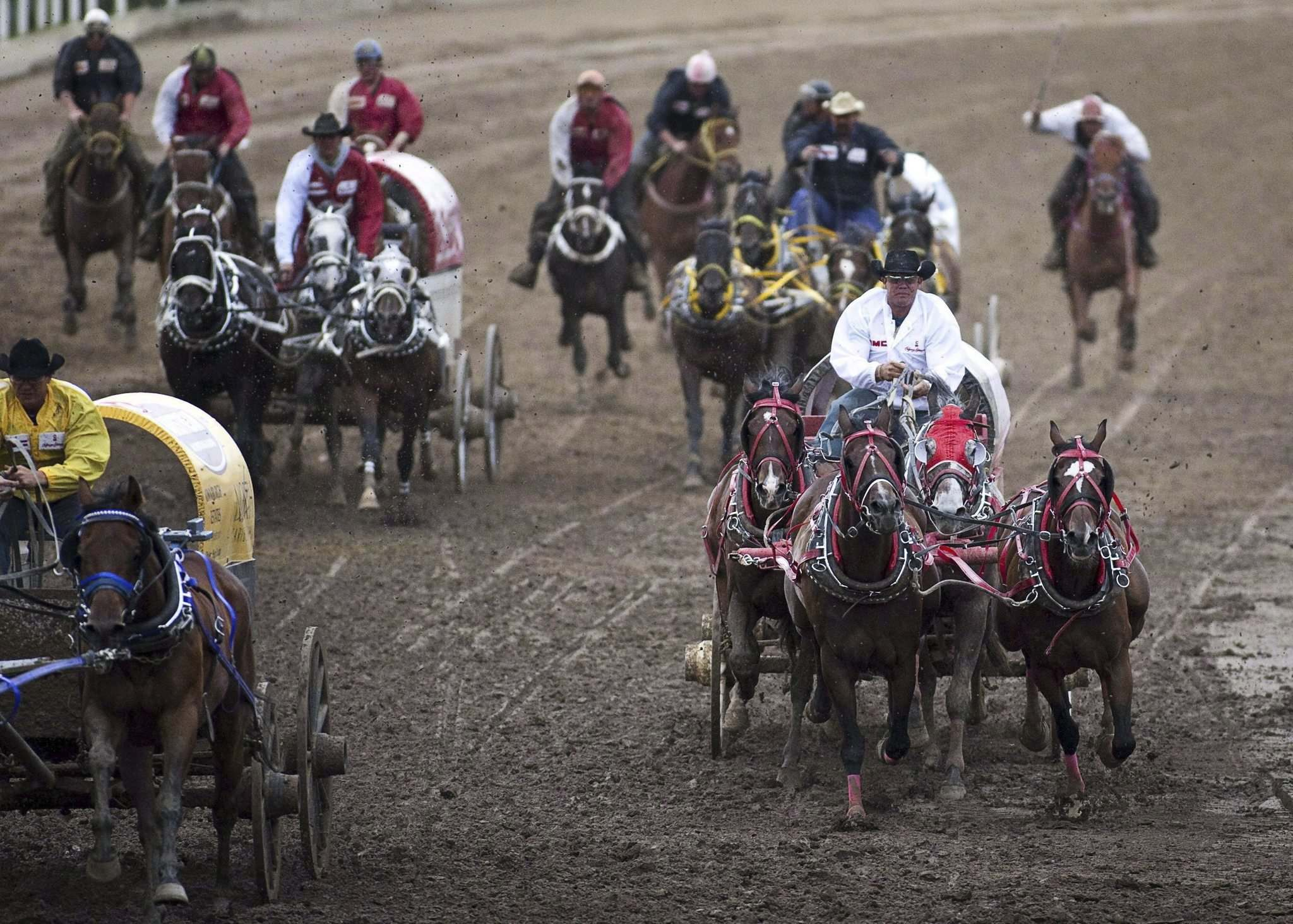 Jeff McIntosh / The Canadian Press FILES</p><p>Six horses died at this year's Calgary Stampede.</p>