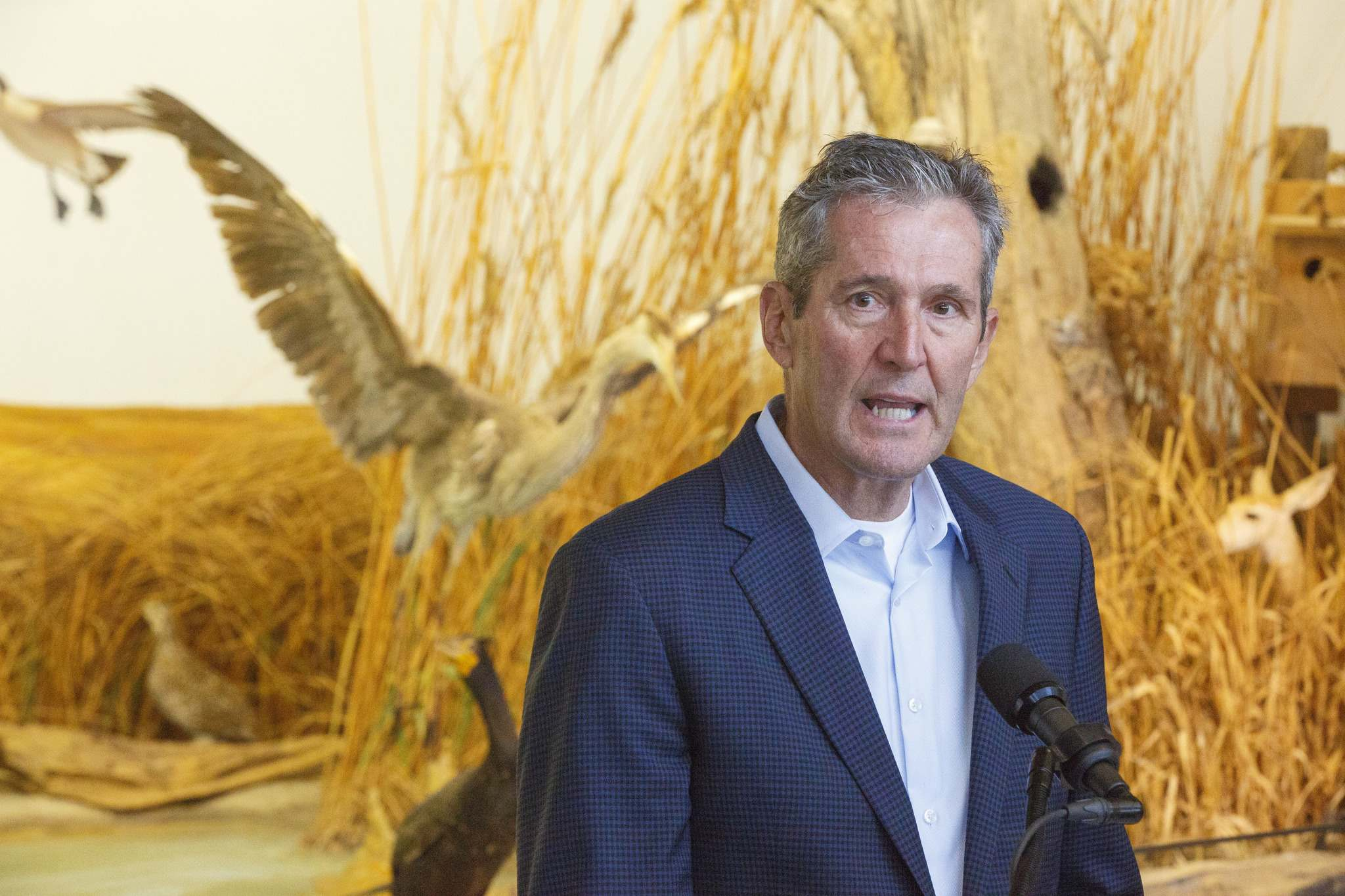 MIKE DEAL / WINNIPEG FREE PRESS</p><p>Manitoba PC Leader Brian Pallister announces during a news conference at Oak Hammock Marsh Interpretive Centre Tuesday morning, that if his party is re-elected they would provide $50 million more for wetland protection and set Canada's highest biofuel standards to reduce emissions.</p>