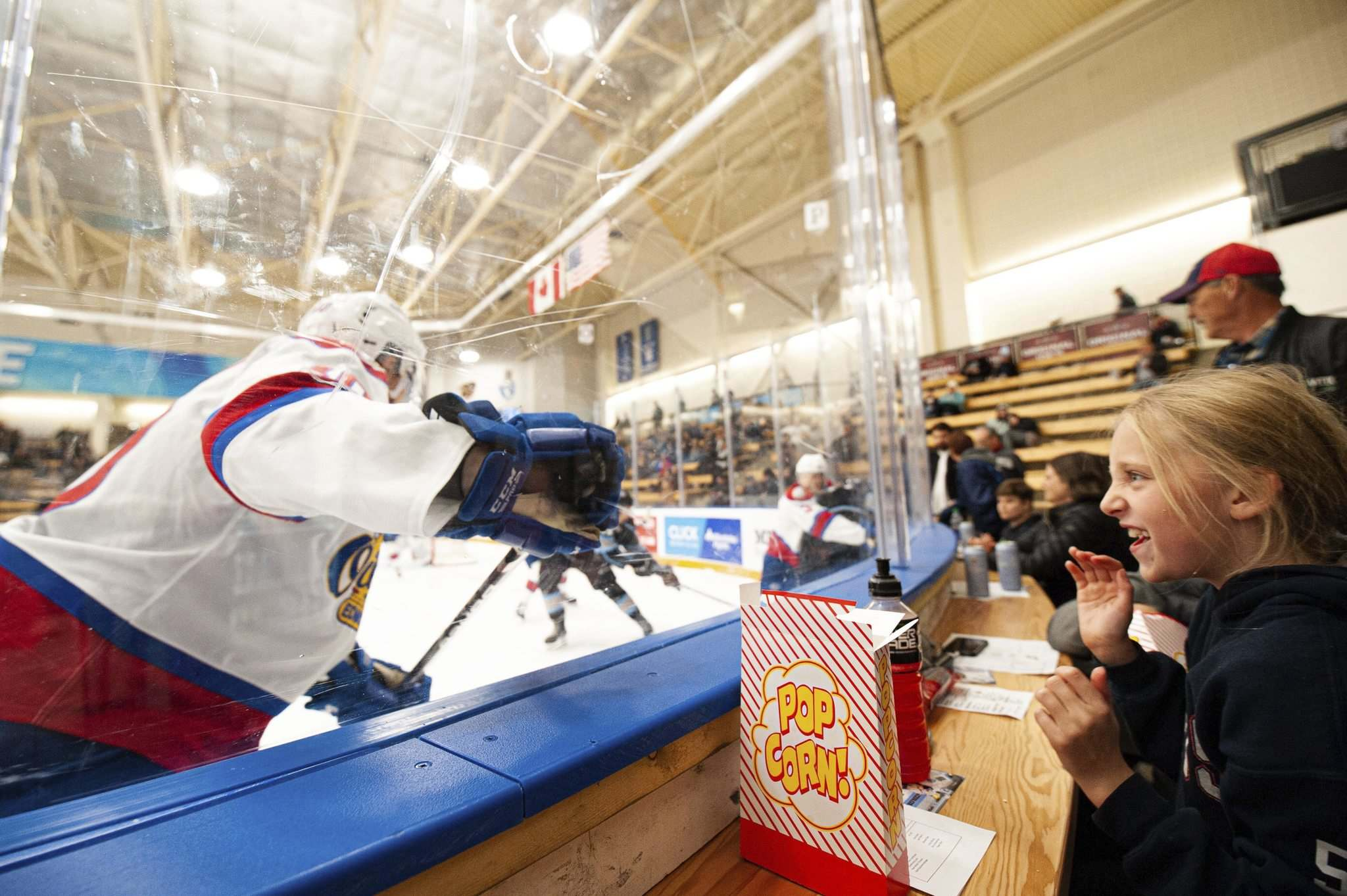 Juno Gill gets a true front row experience as Edmonton's Vladimir Alistrov hits the boards. (Mike Sudoma / Winnipeg Free Press)</p>
