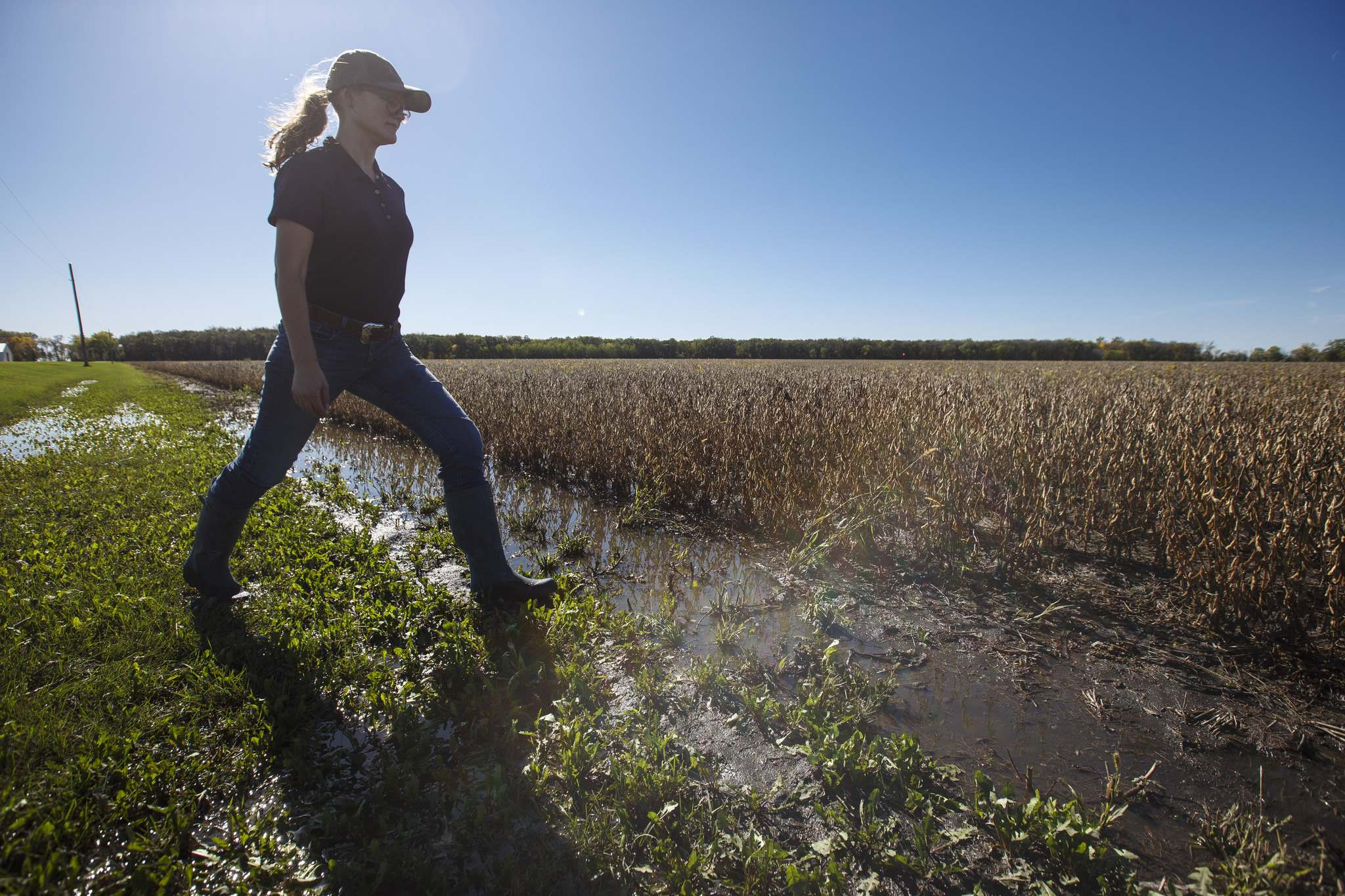 The amount of rain that fell in the province in September flooded many farmers' fields, including Fiona Jochum's in St. Francois Xavier. (Mike Deal / Winnipeg Free Press files)</p></p>