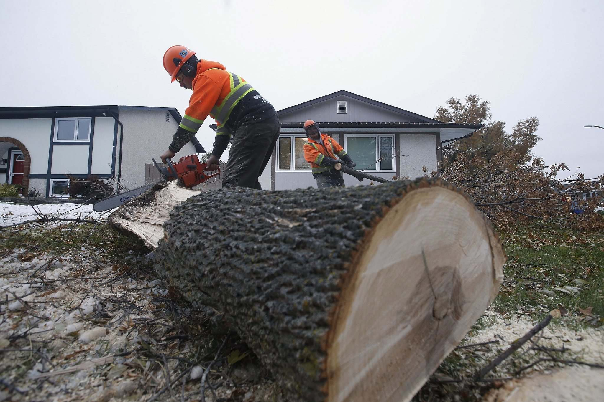 JOHN WOODS / WINNIPEG FREE PRESS</p><p>Shurwood Forest tree service owner Doug Panchuk (left) and his crew removes a damaged tree Tuesday in North Kildonan.</p>