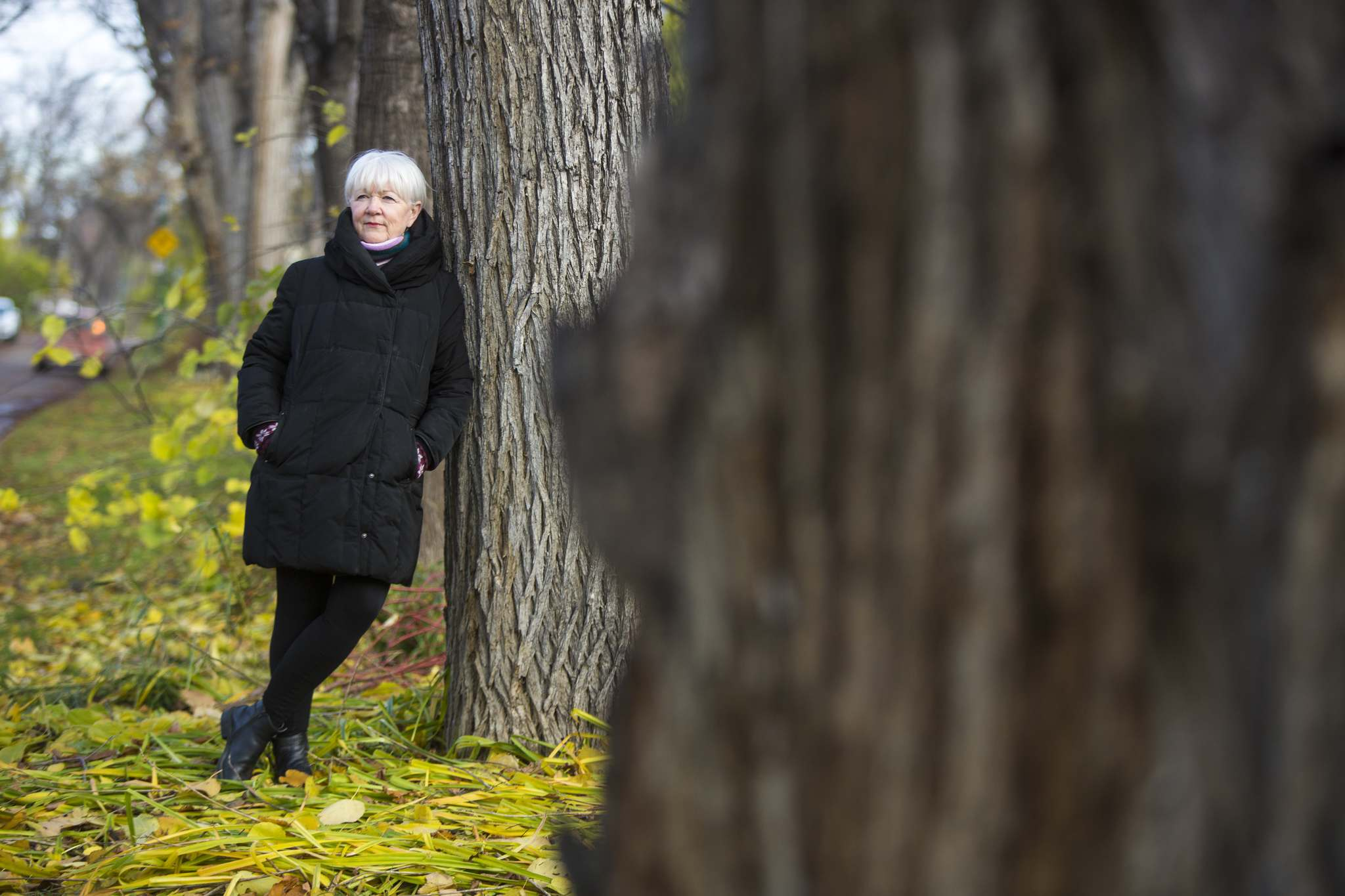 """If there was ever a time for us to take action, a time to plant trees on every square foot of land available — public and private — it's now,"" Buffie says. (Mikaela MacKenzie / Winnipeg Free Press)"
