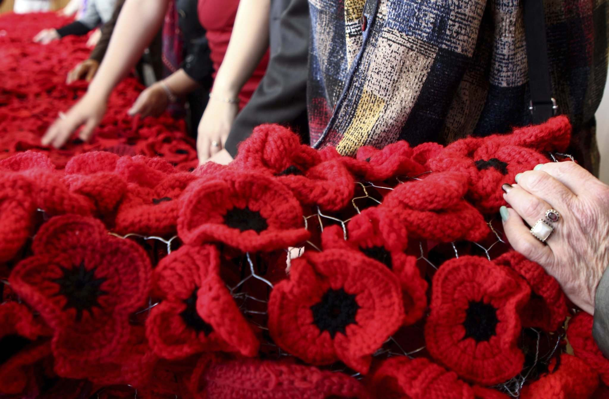 Volunteers who worked on the Poppy Blanket Project admire the memorial — an 85-foot-long blanket of handmade poppies during the blanket's unveiling at Winnipeg City Hall, Thursday.