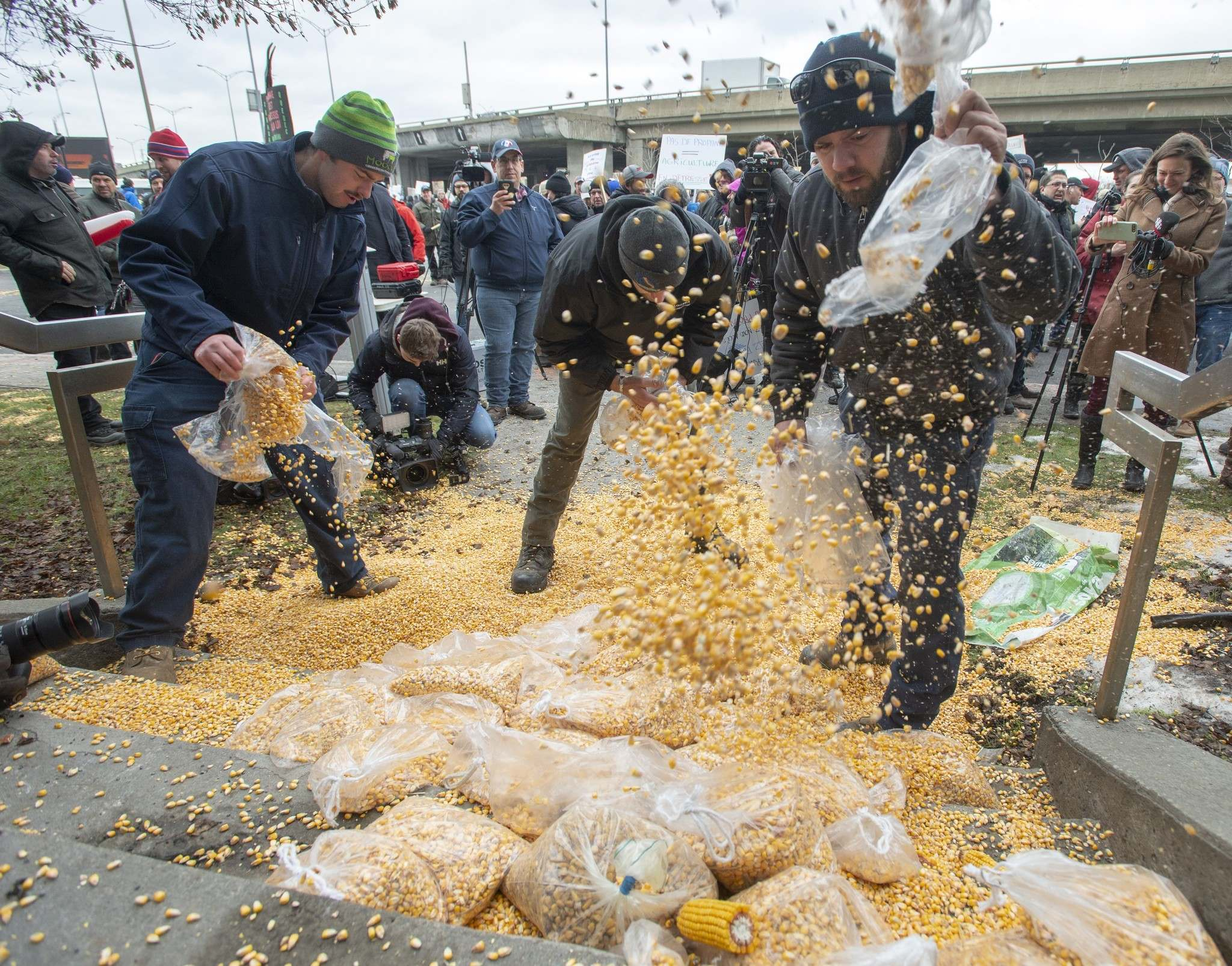Farmers protesting the ongoing rail strike dump corn in front of the riding office of Prime Minister Justin Trudeau Monday in Montreal. (Ryan Remiorz / The Canadian Press)