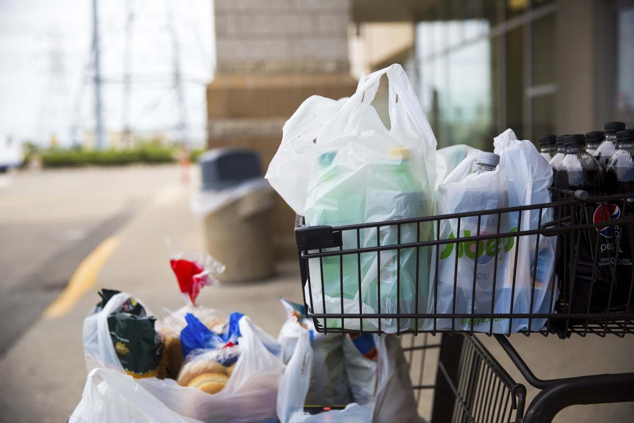 MIKAELA MACKENZIE / WINNIPEG FREE PRESS FILES</p><p>On average, 40 per cent of every load of groceries brought home by Canadians goes to waste.</p>