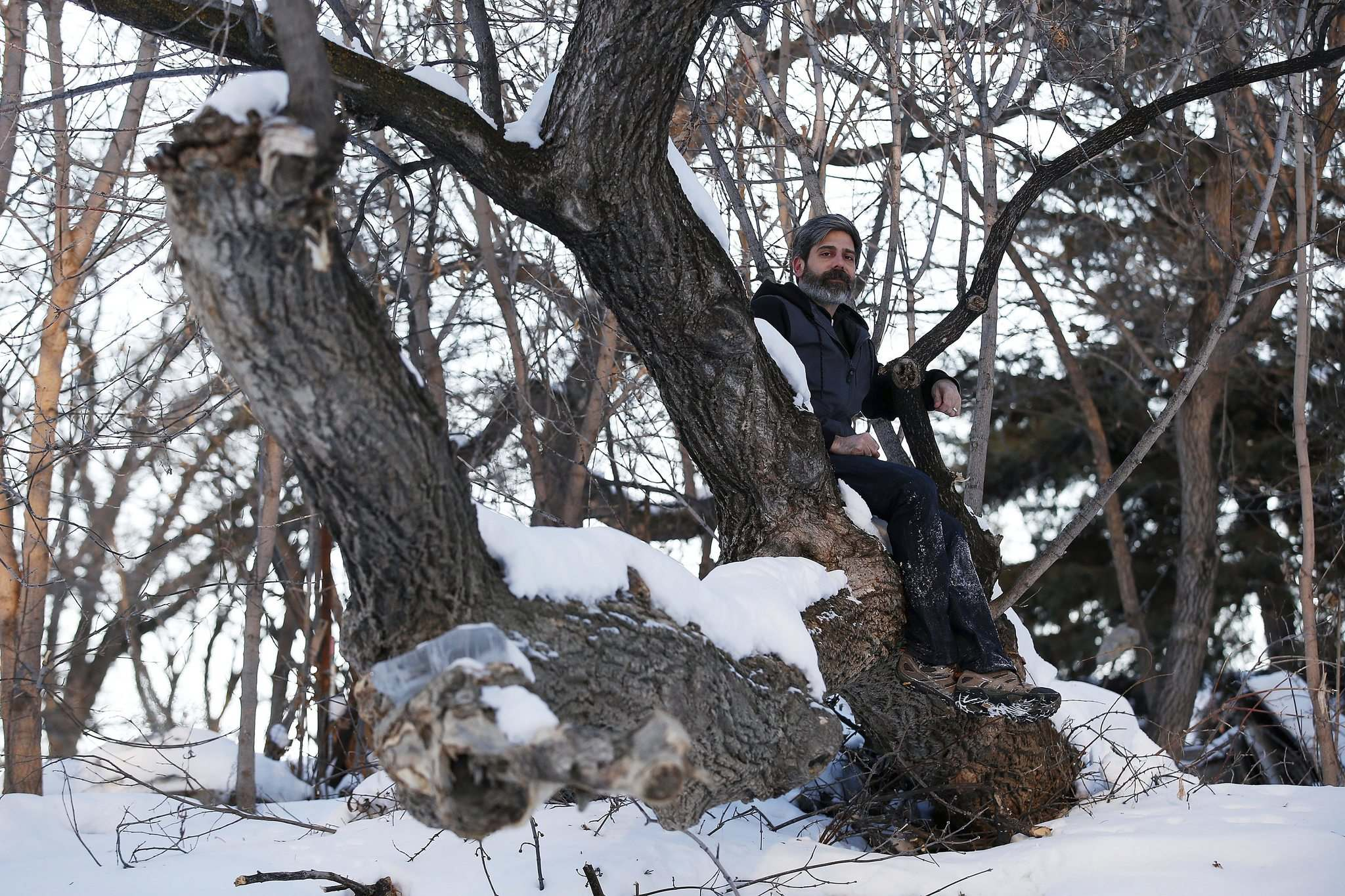 JOHN WOODS / WINNIPEG FREE PRESS</p><p>A dying elm extending into the Assiniboine River from Ash Raichura's backyard became his favourite contemplation place. He fears what remains will be washed away in the spring.</p>