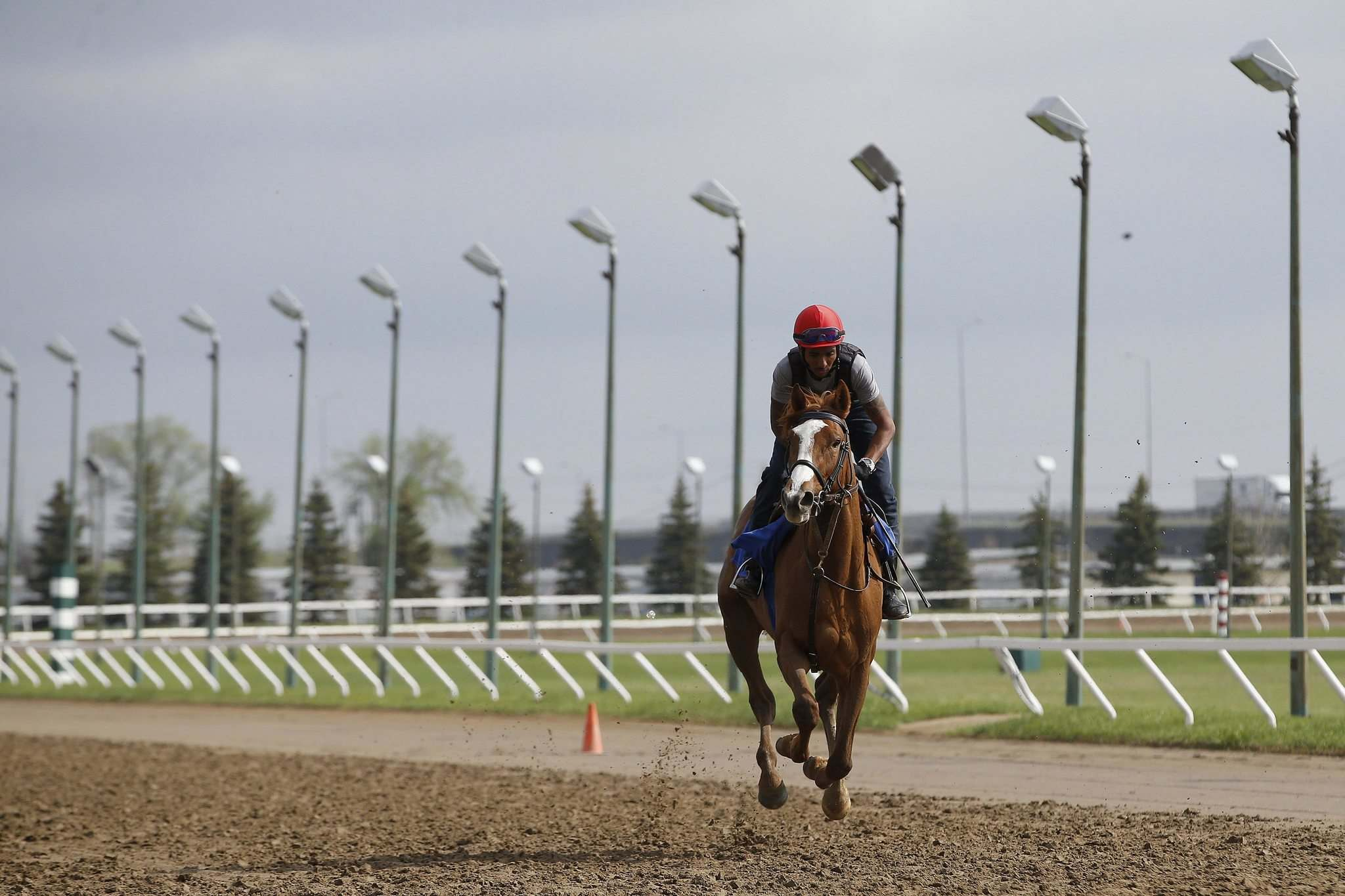 Jockey Richard Mangalee rides the track at Assiniboia Downs Sunday. He said the silence at the Downs 'might be a little better for the horses.' (John Woods / Winnipeg Free Press)</p>