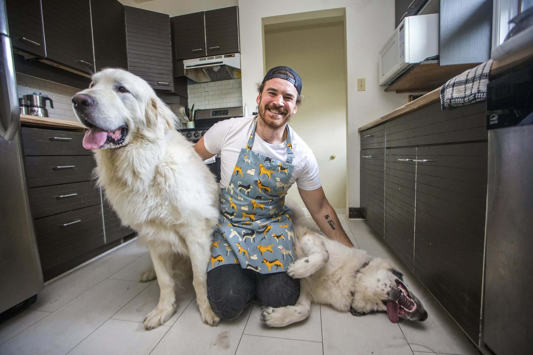 "MIKAELA MACKENZIE / WINNIPEG FREE PRESS</p> <p>Blue Bombers fullback John Rush, with his dogs Bone (left) and Bailey, turned a month-long experiment with veganism into a lifestyle.</p> <p>""></a><figcaption readability="