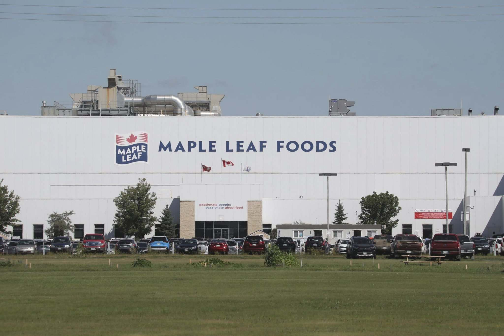 The province decided against a shutdown of the Maple Leaf Foods Inc. hog processing plant in Brandon, which employs 2,300 workers. (Tim Smith / The Brandon Sun)</p>