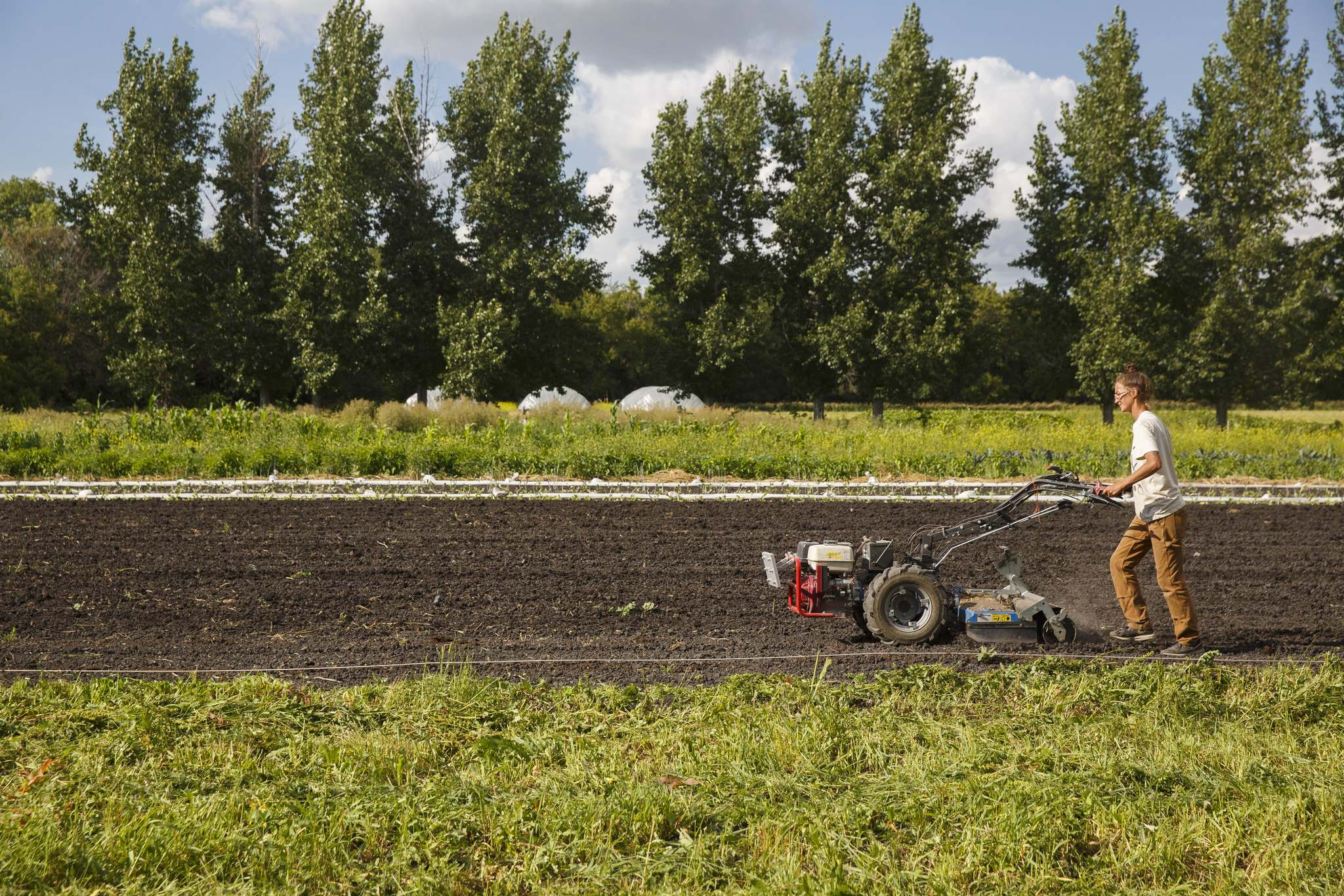 Justin's sister Renée Girard, operating tiller, is helping out on the farm this year. </p>