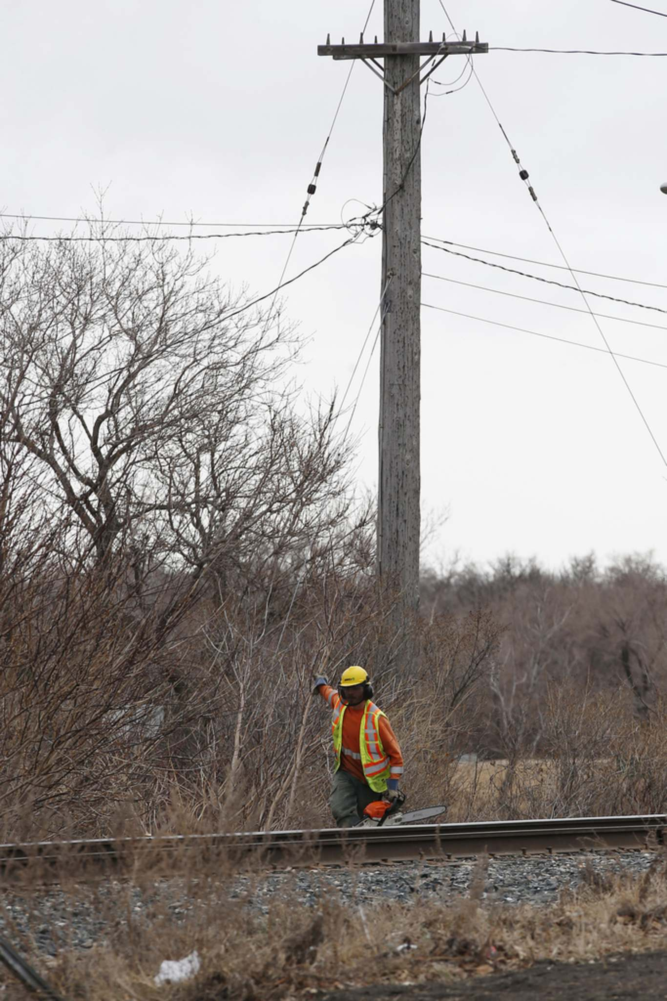 <p>Crews were out clearing trees along a hydro and rail line near Omand Park in Winnipeg Tuesday.</p>