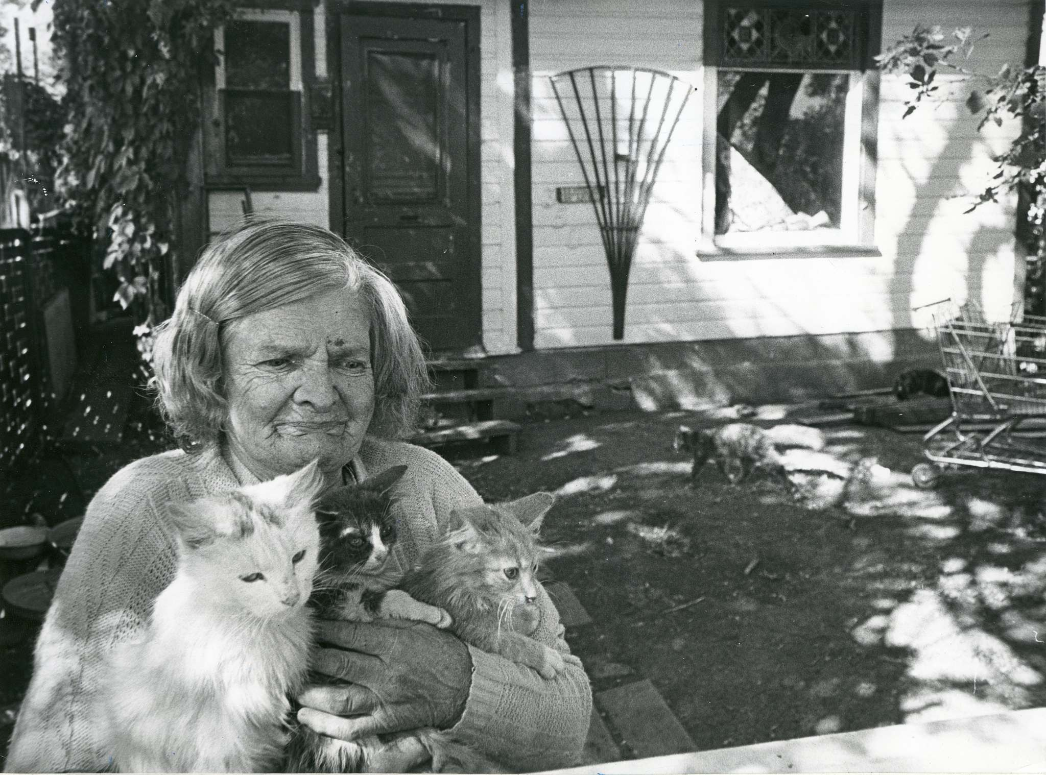 Bertha Rand, known to many simply as Winnipeg's cat lady, seen outside her Queen Street home in August 1981. (Winnipeg Free Press files)</p>