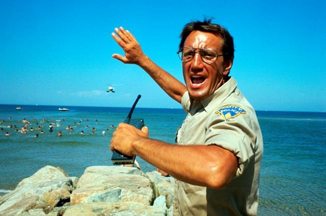 """This image released by Universal Pictures shows Roy Scheider in a scene from the iconic 1975 film """"Jaws."""" With all major new releases postponed until at least Labor Day weekend due to the pandemic, summer moviegoing has belonged to the classics. Films like """"Jaws,"""" """"E.T.,"""" """"Goonies"""" and """"Ghostbusters"""" still rank among the summer's top draws. (Universal Pictures via AP)"""