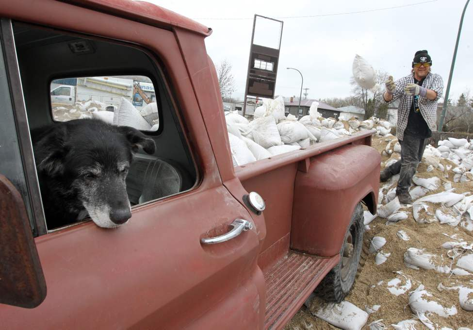 "A man who wished to only be identified as Jeff tosses sandbags onto his truck as his dog ""Lucky"" looks on, Tuesday afternoon. Although Jeff lives away from flood-affected regions, he is volunteering his time to help defend those affected by the rising Assiniboine River. (Colin Corneau/Brandon Sun)"